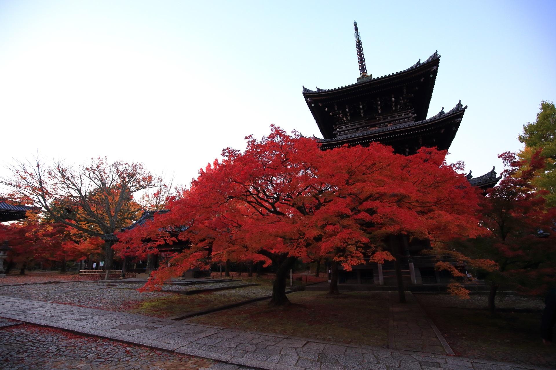 真如堂の三重塔と紅葉の絵になる秋の風景