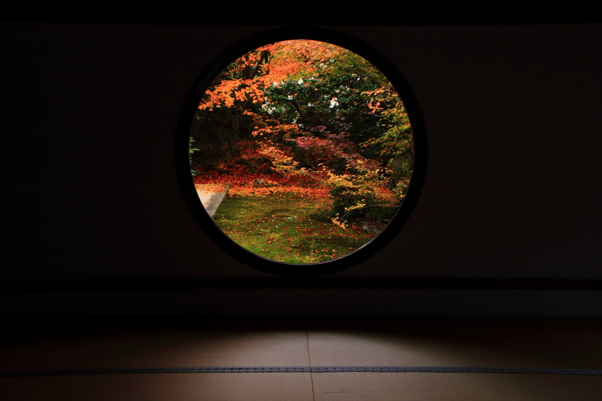 丸い「悟りの窓」の紅葉