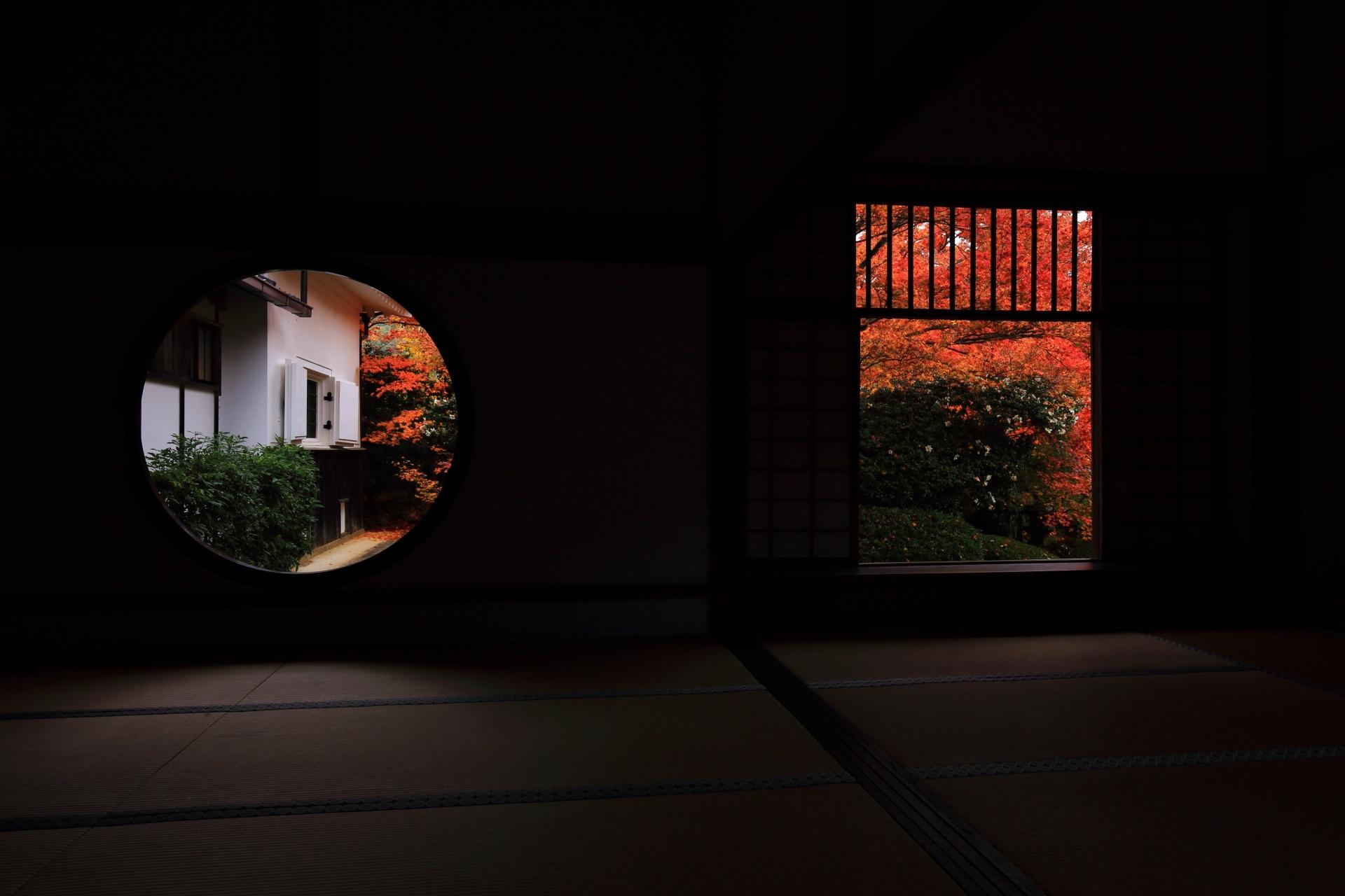 高画質 紅葉 悟りの窓 迷いの窓 写真