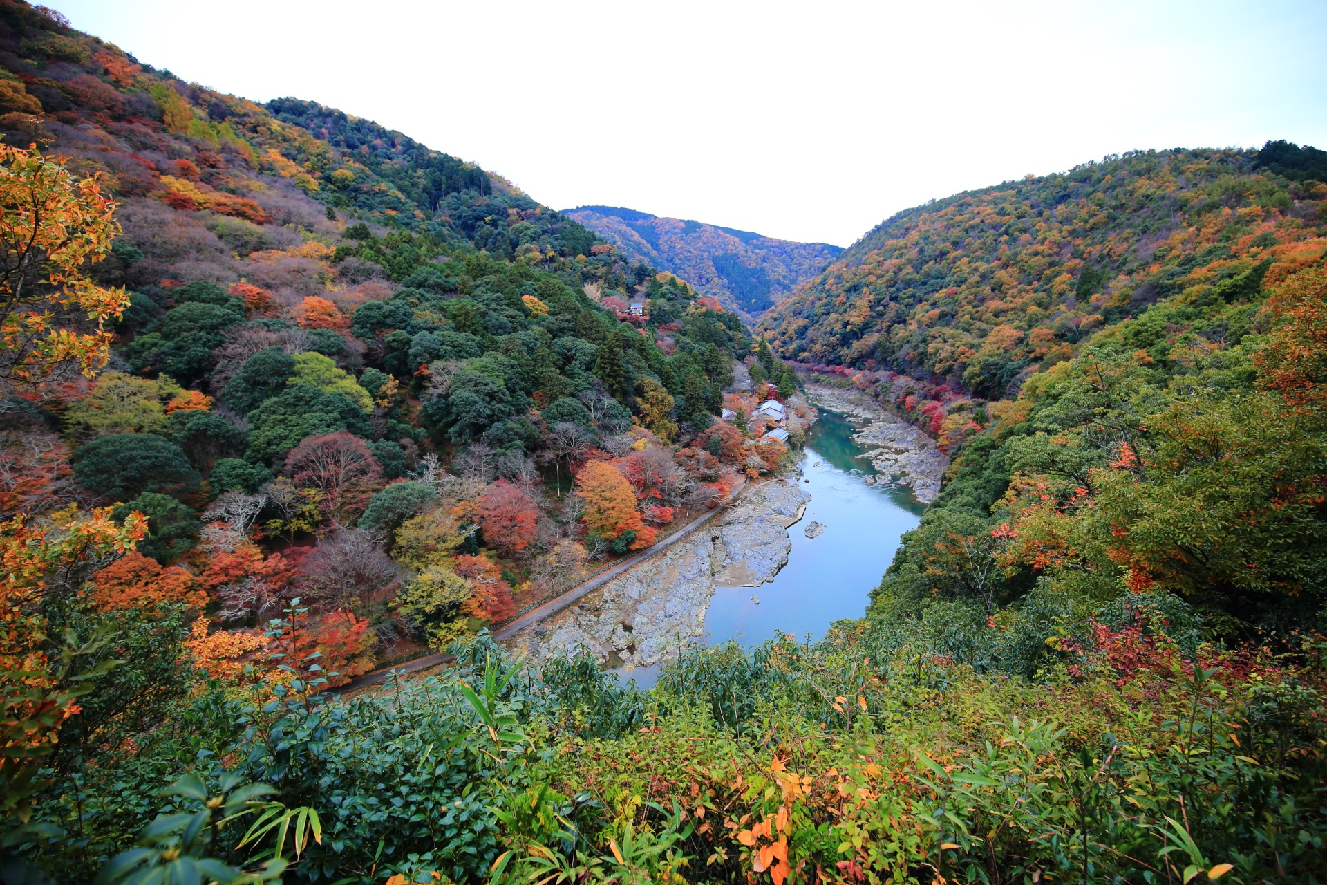 Kyoto Arashiyama Kameyama autumn leaves
