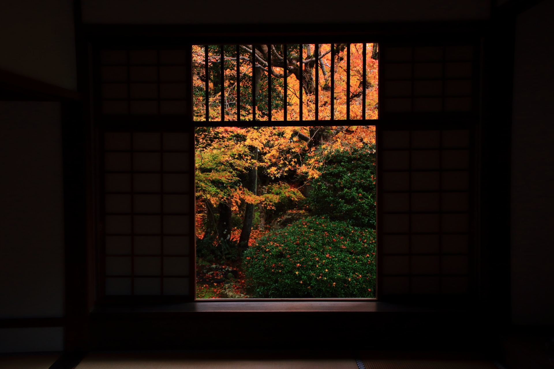 四角い「迷いの窓」の紅葉