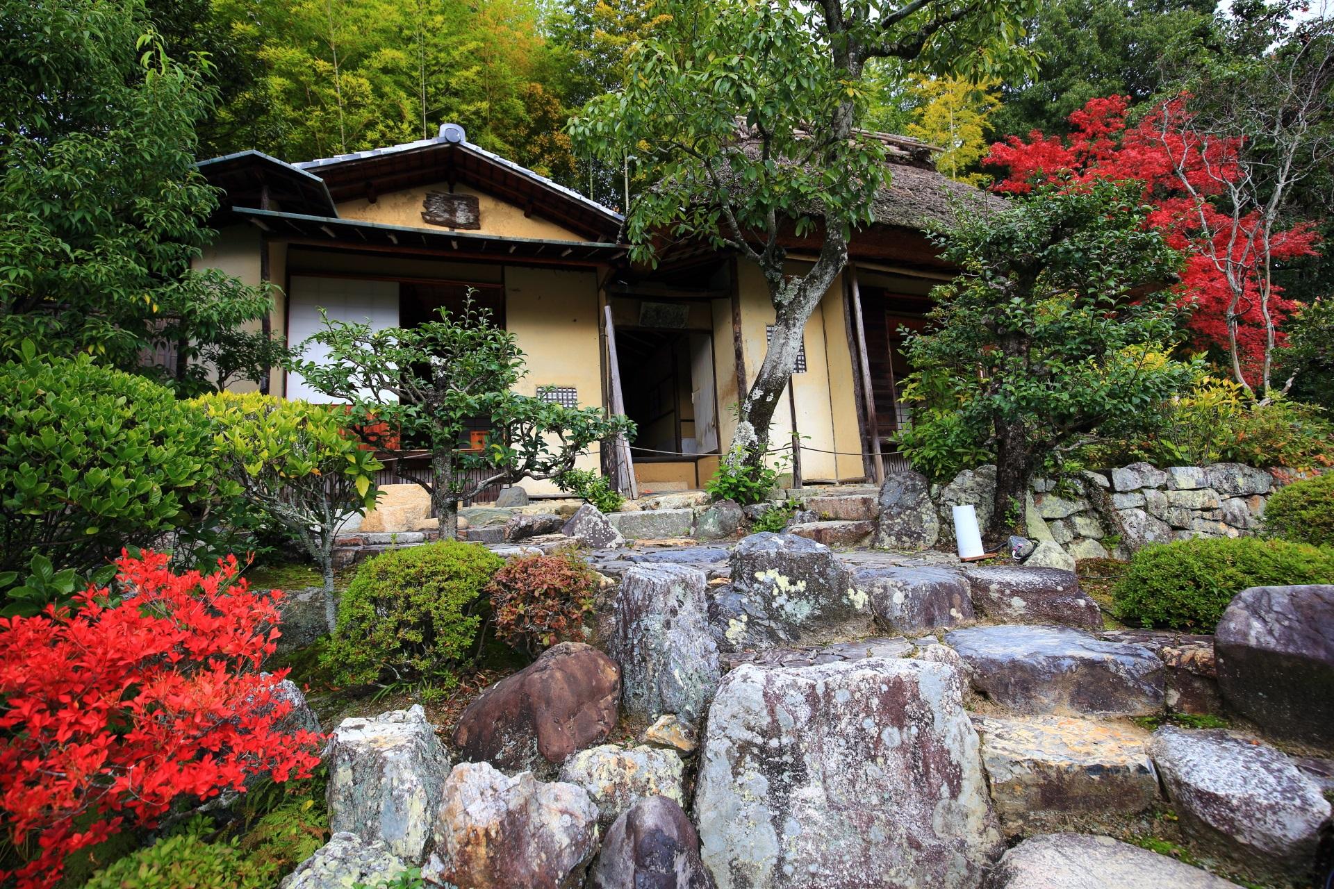 等持院の茶室「清漣亭(せいれんてい)」と鮮やかな紅葉
