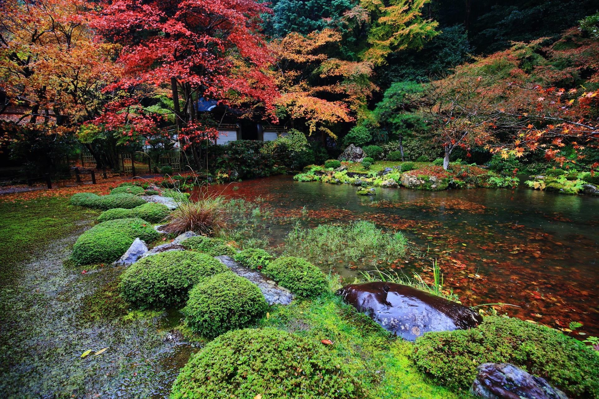 苔などの緑も綺麗な池泉回遊式庭園の南禅院