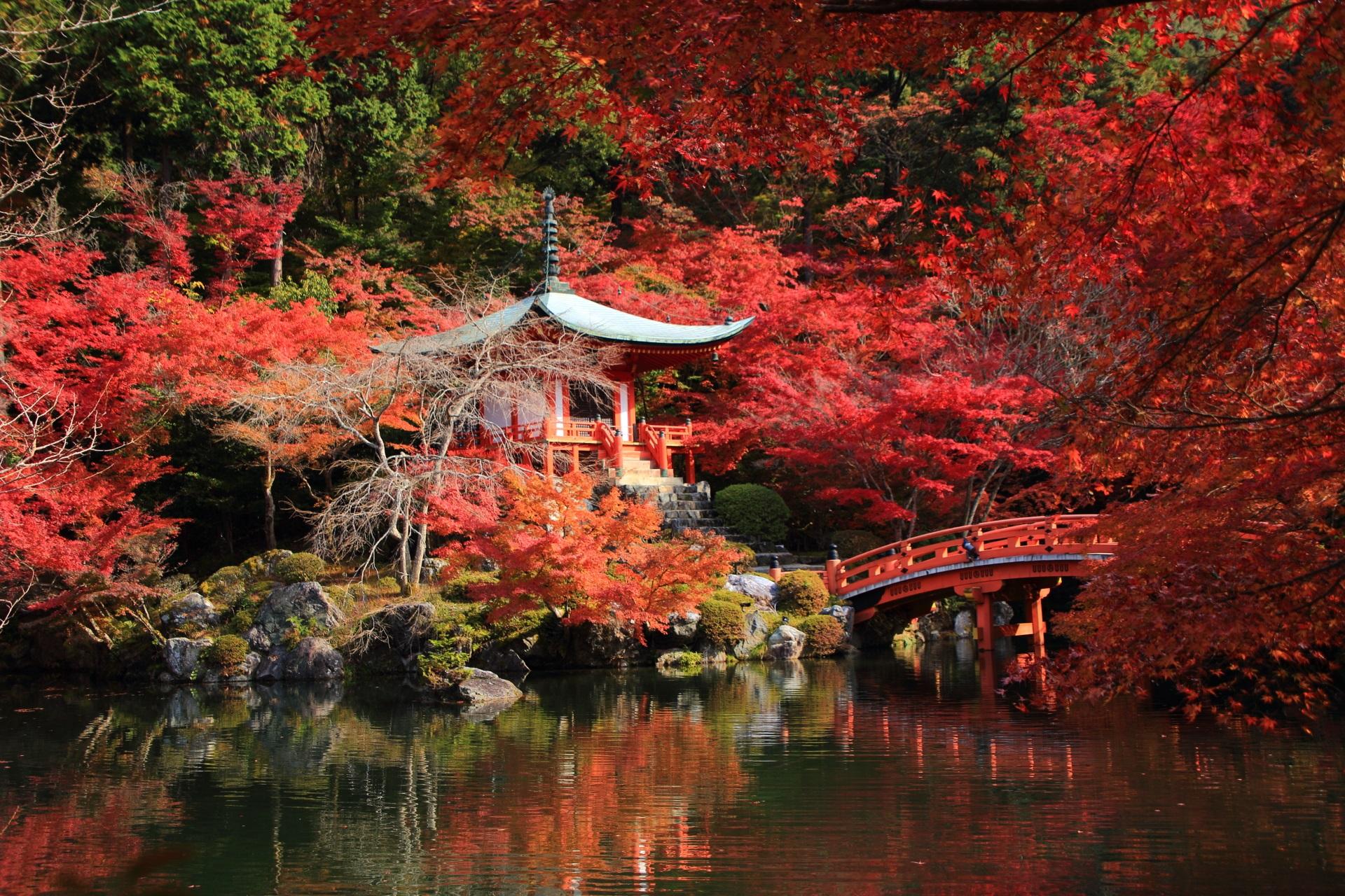 醍醐寺 紅葉 水鏡 高画質 写真