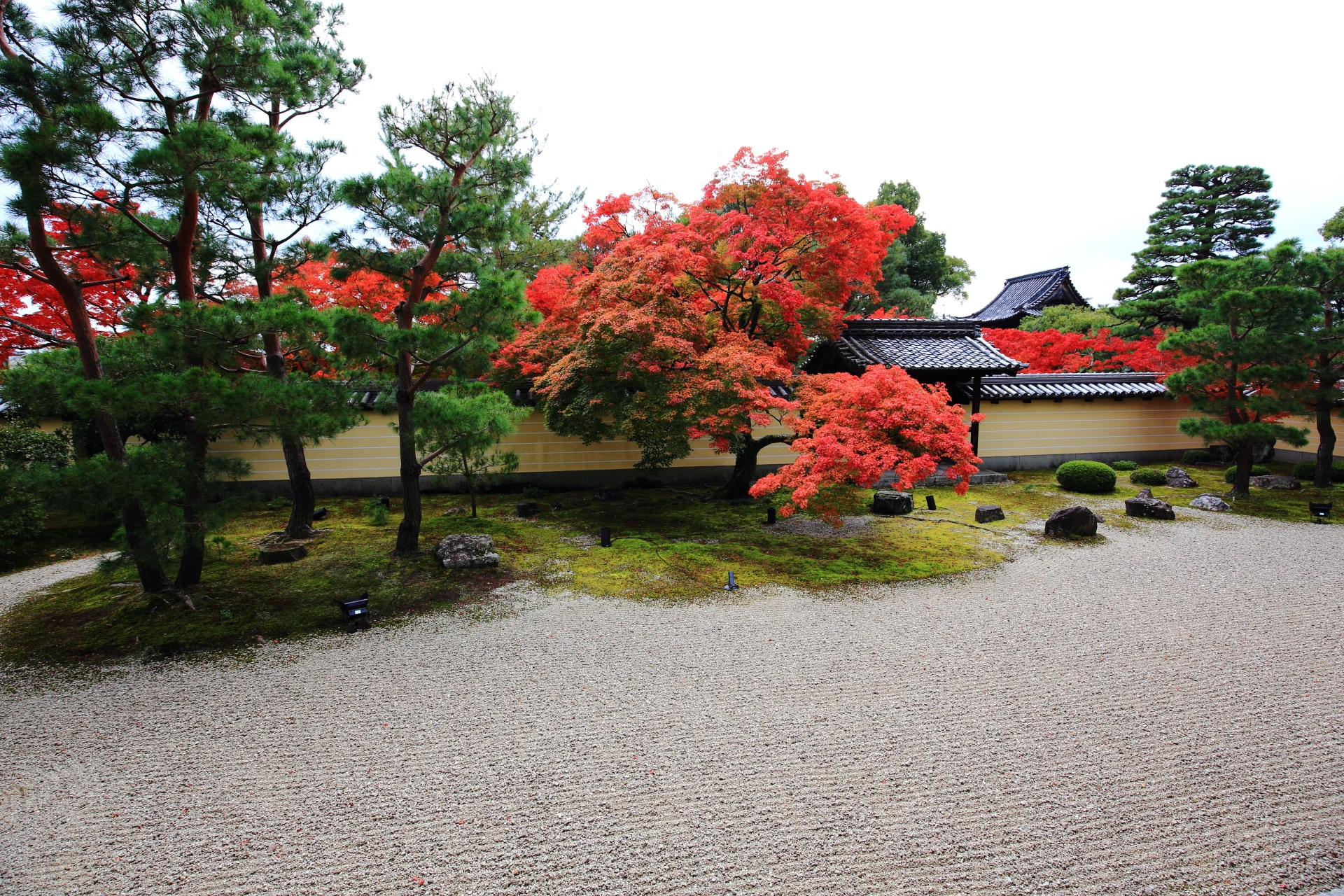 Tojiin-Temple in Kyoto colored leaves