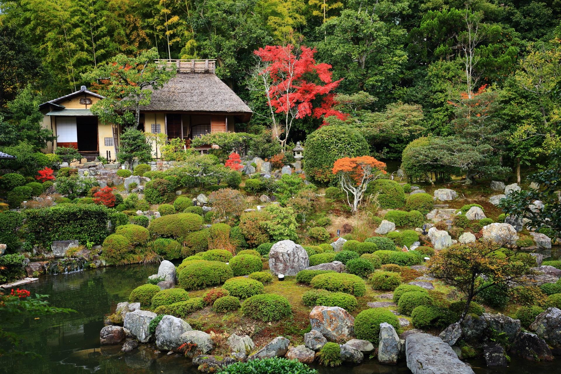 高画質 等寺院 紅葉 画像 芙蓉池