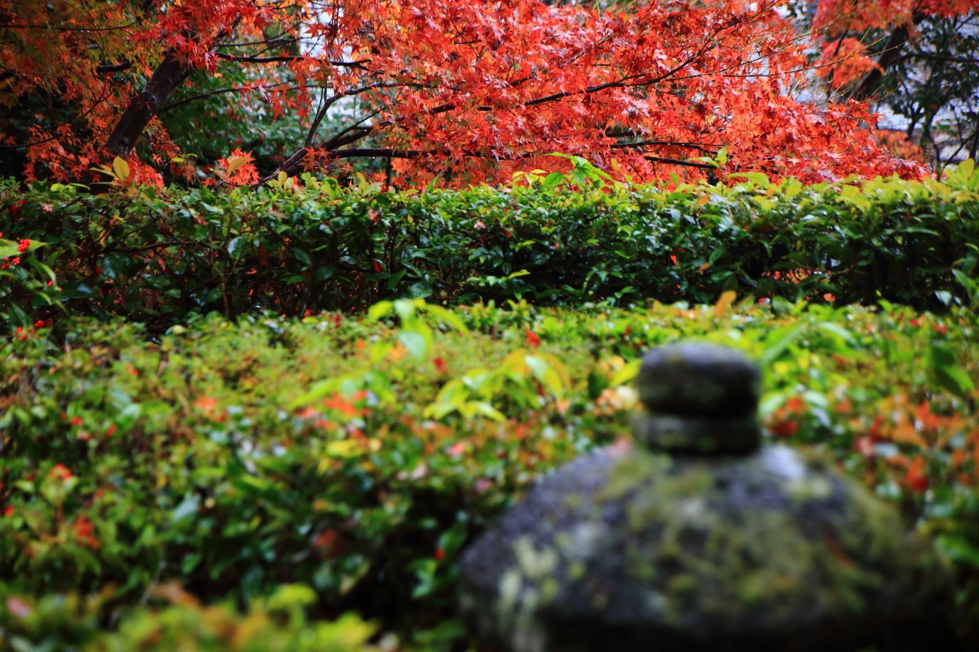芭蕉庵付近の燈籠と紅葉