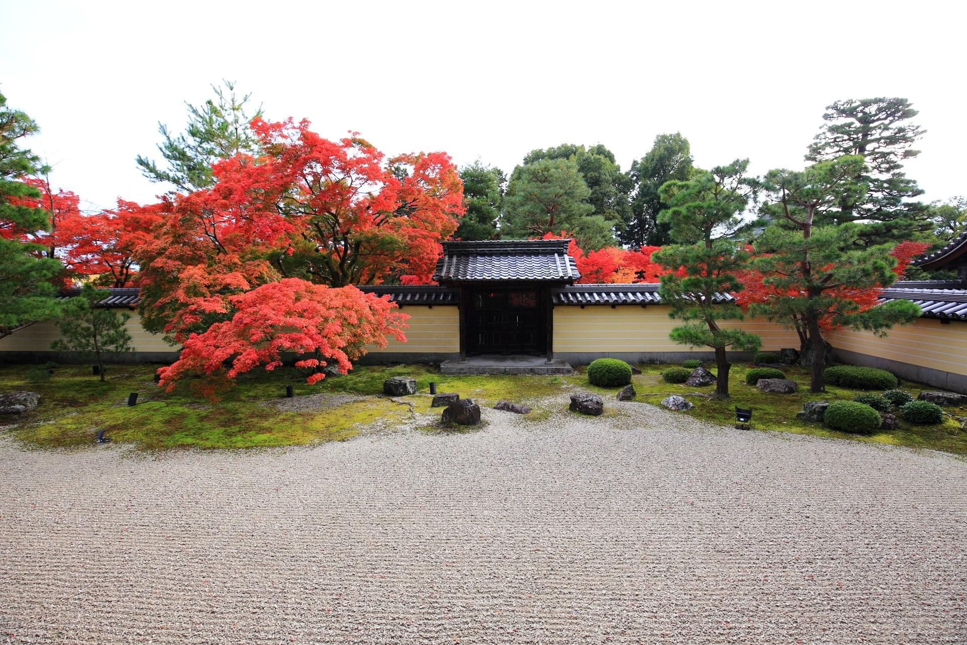 高画質 等寺院 紅葉 写真 方丈南園
