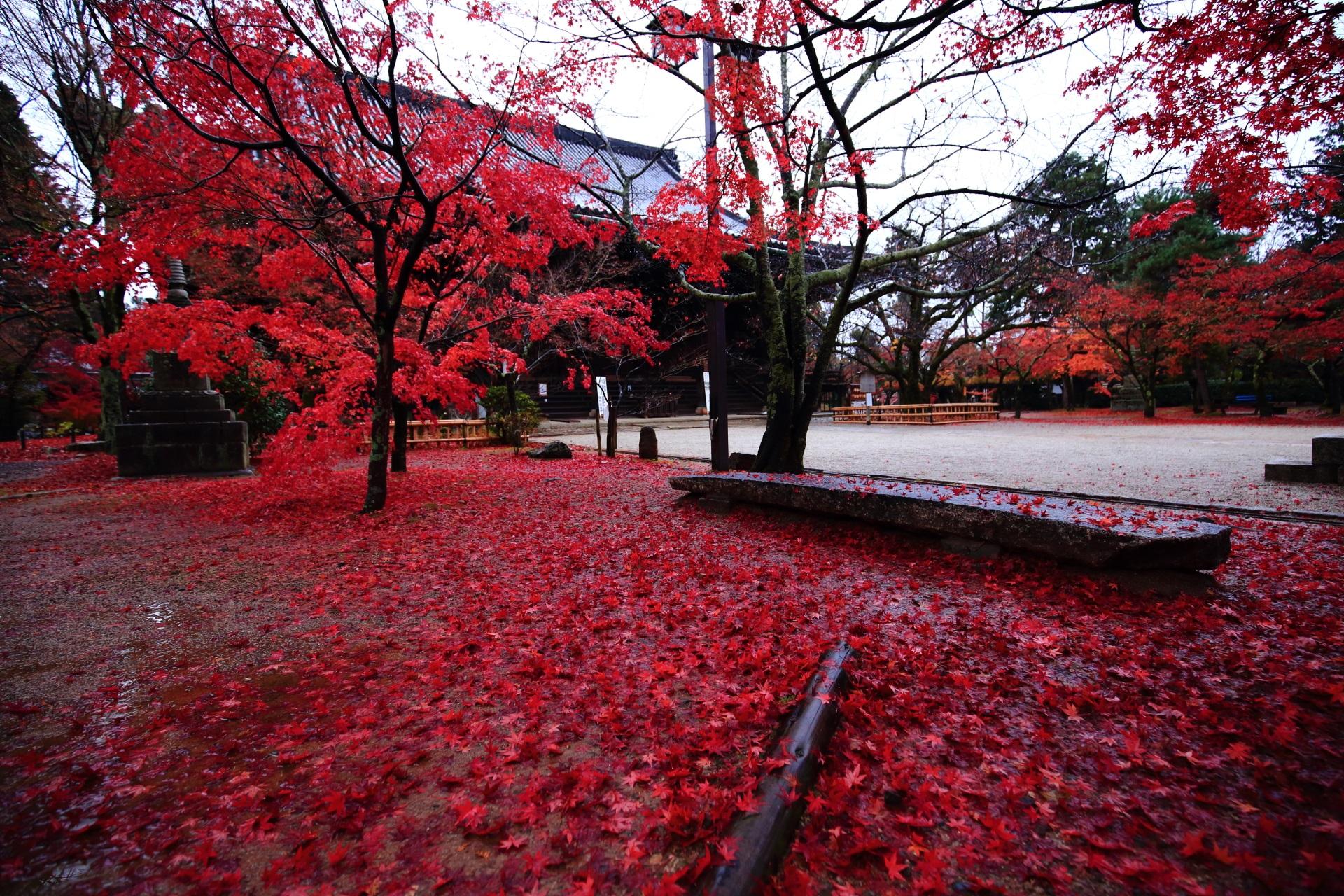 真如堂の怖いくらいの赤さの散り紅葉