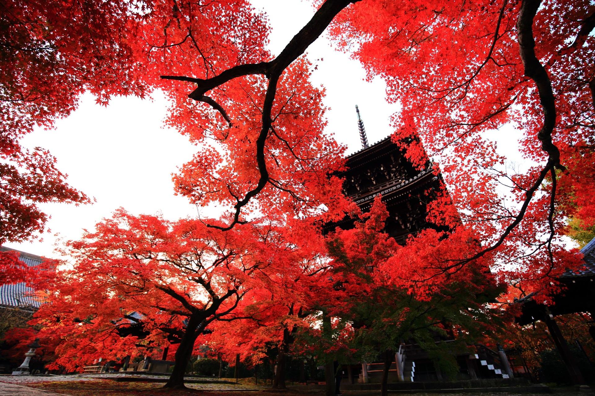 真如堂の素晴らしい紅葉と秋の情景に感謝