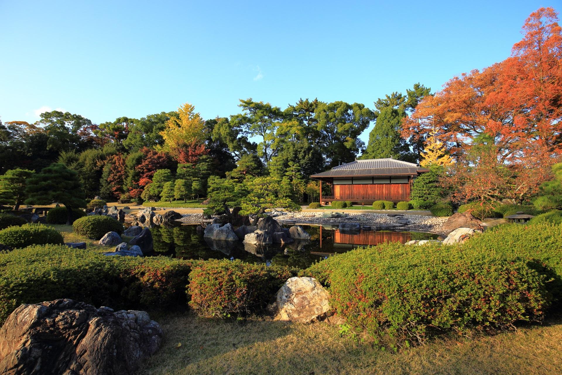 多種多様な植物や木々と色合いが見られる秋の清流園