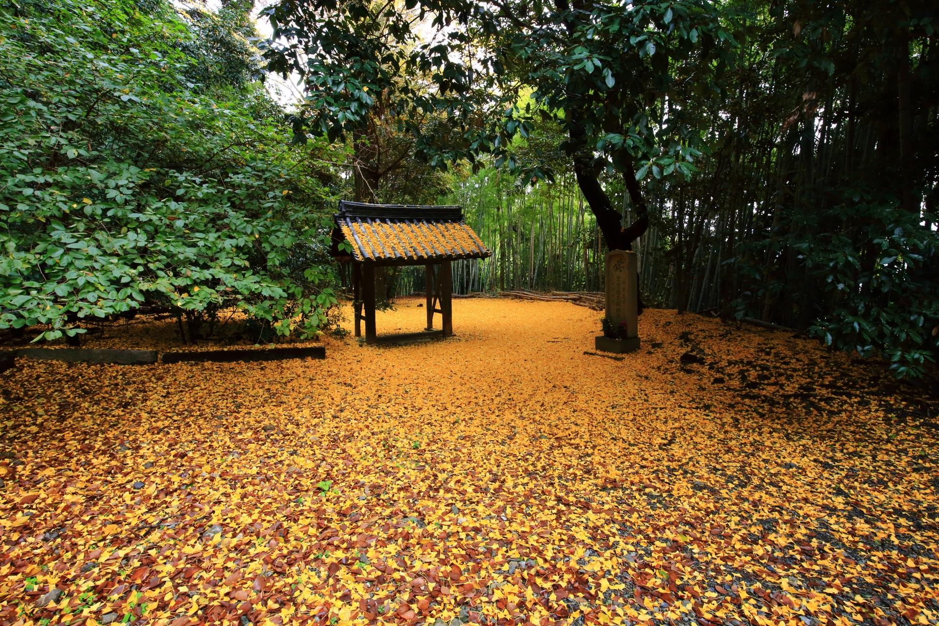 山崎聖天の有名な散り銀杏の空間