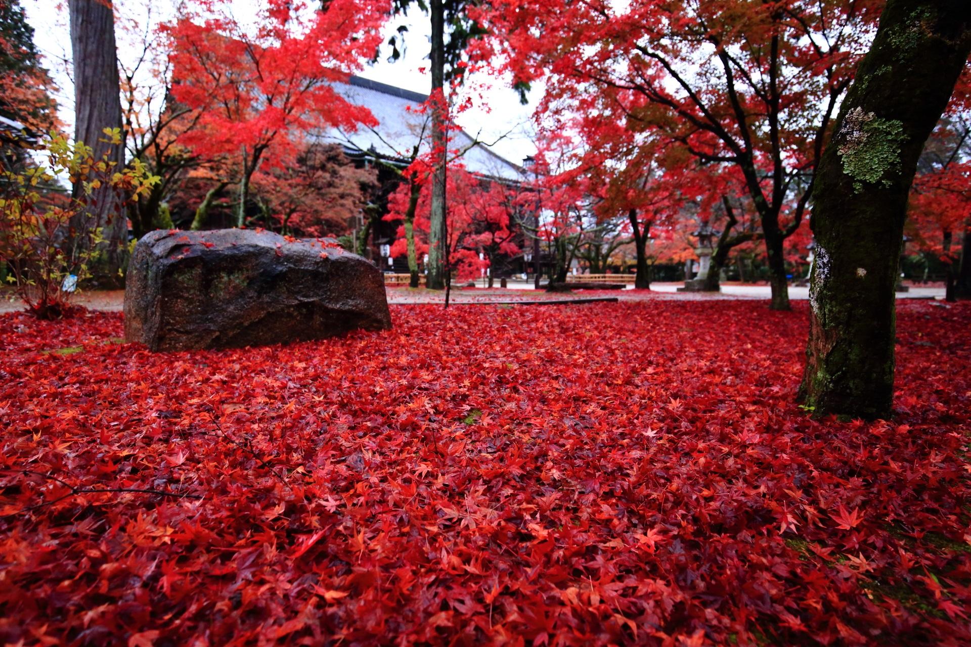 至るところに広げられている紅葉の赤い絨毯