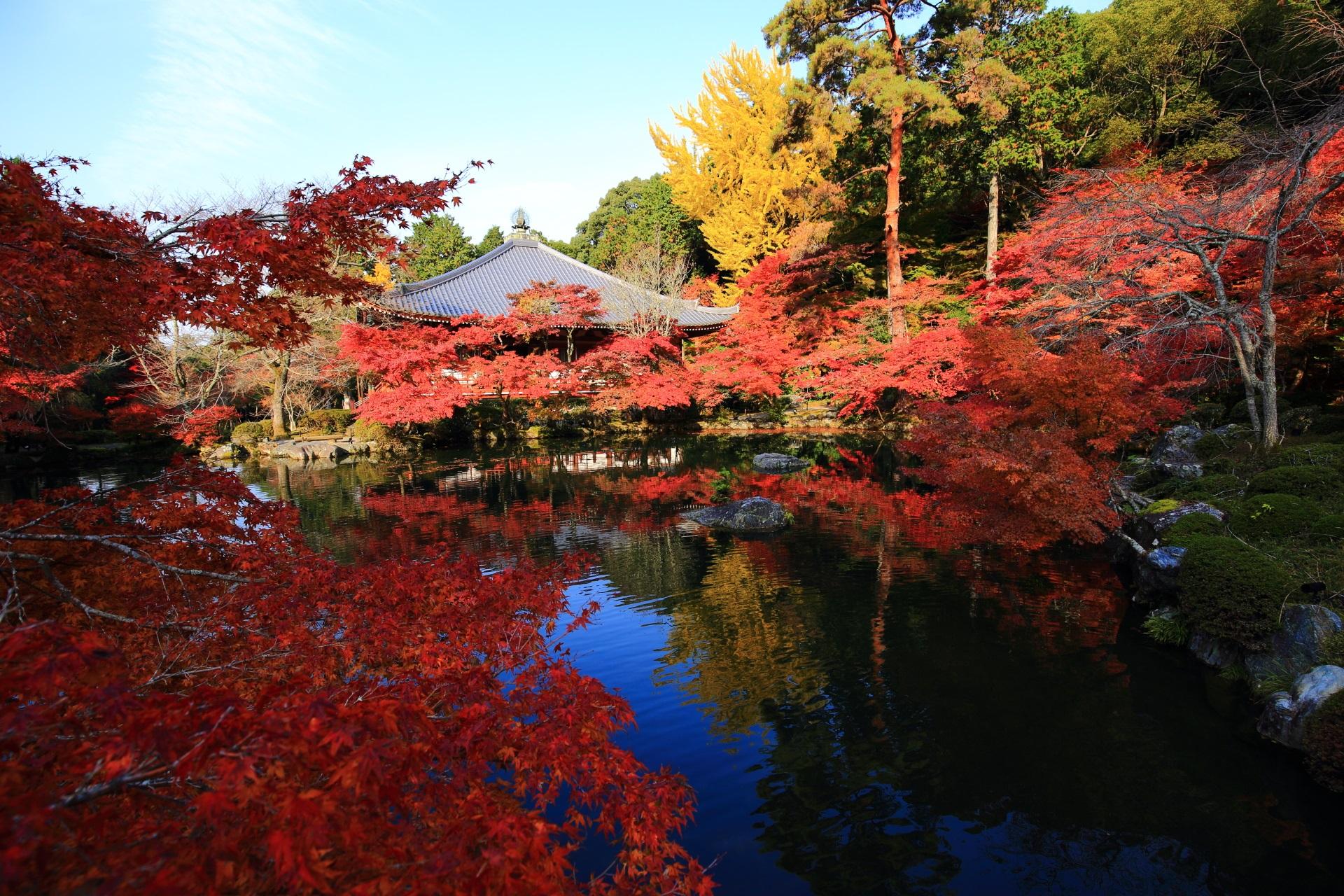 観音堂と水辺を彩る鮮やかな紅葉と銀杏