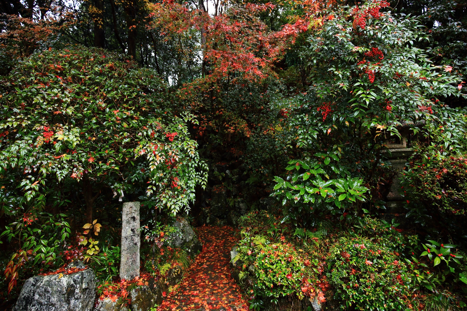 秋色につつまれた山科聖天のお滝不動尊