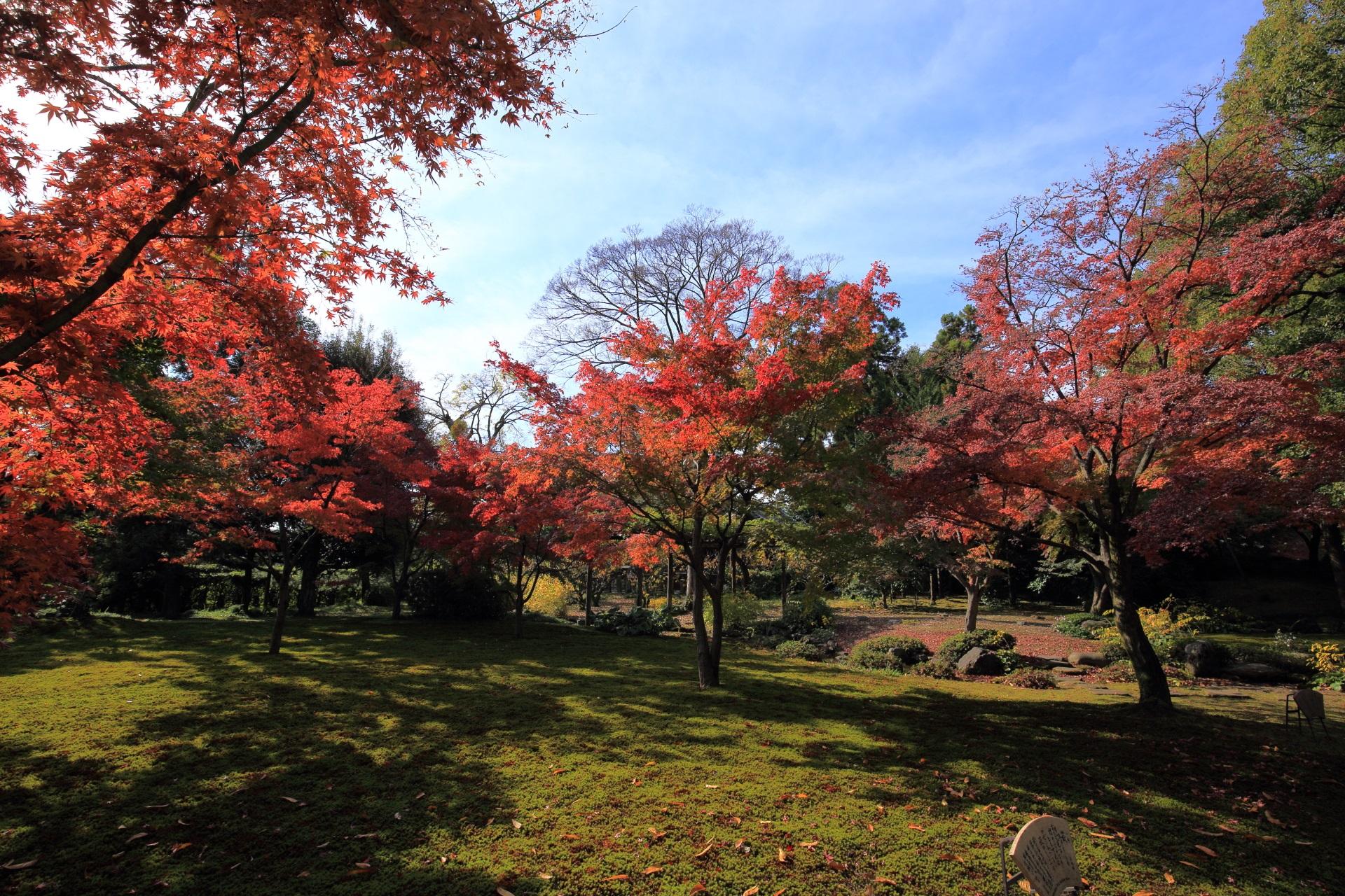 秋色にそまる神苑の平安の庭
