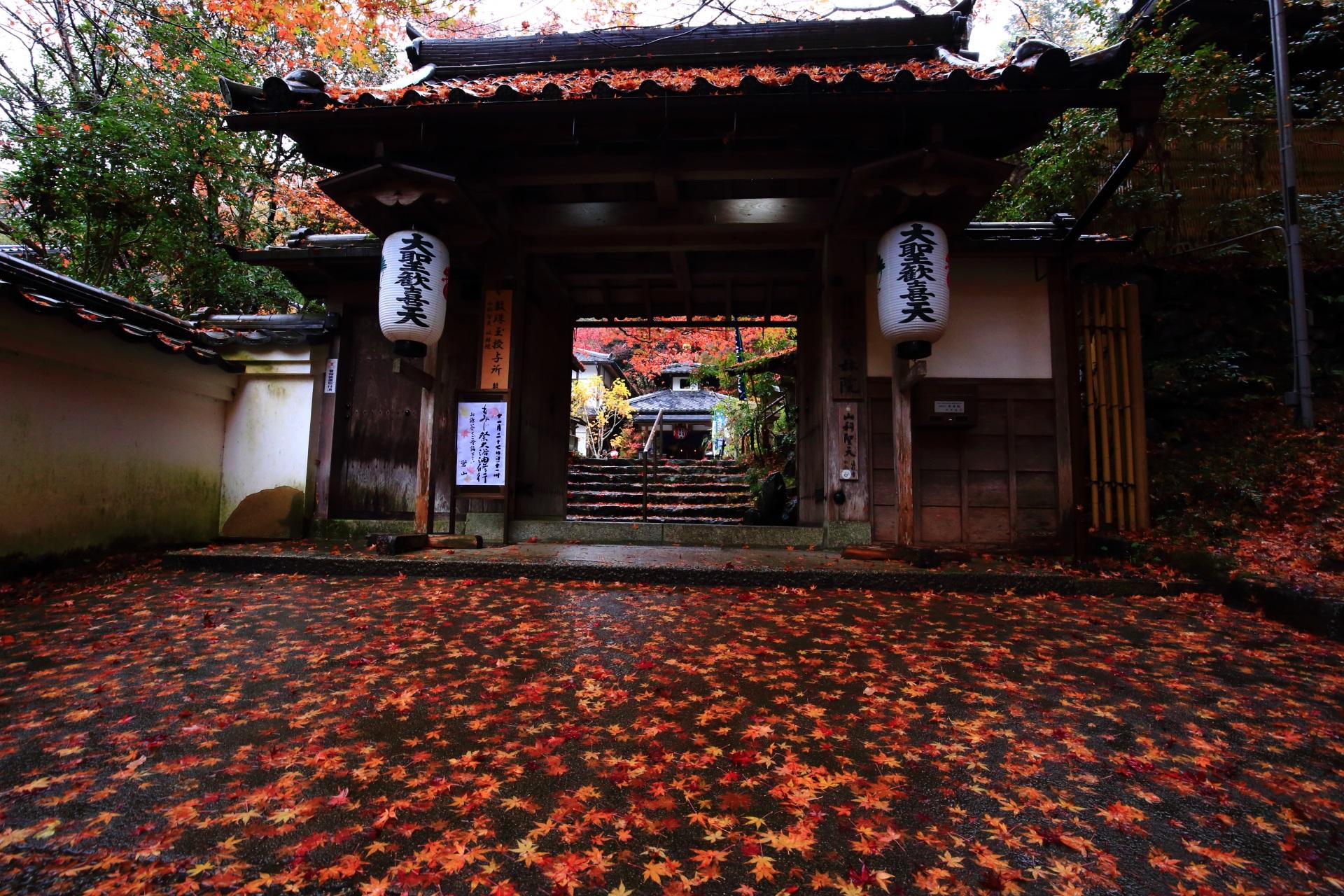 山科聖天の山門と鮮やかで豪快な散り紅葉
