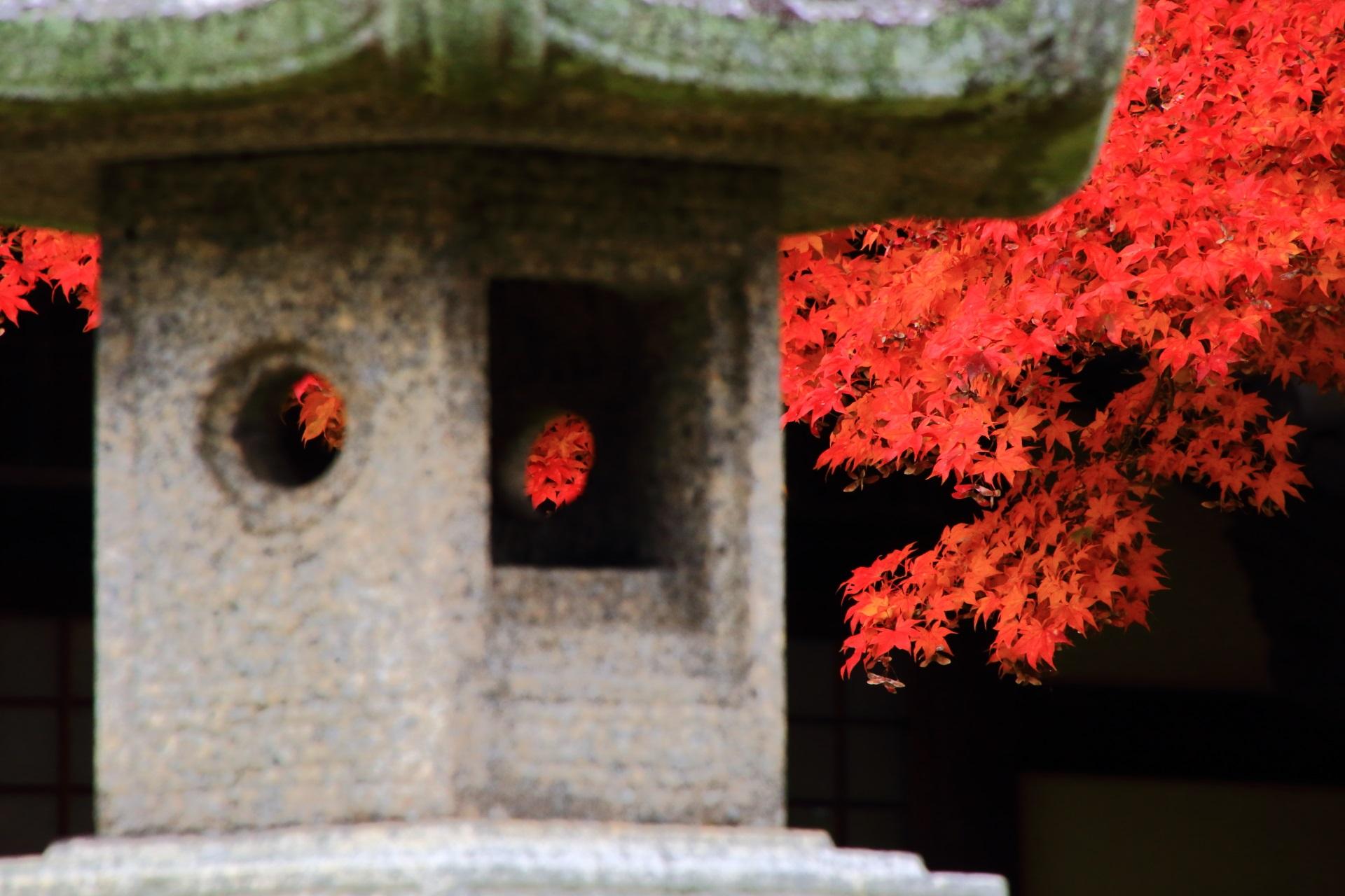 絵になる灯籠の間から見える鮮やかな紅葉