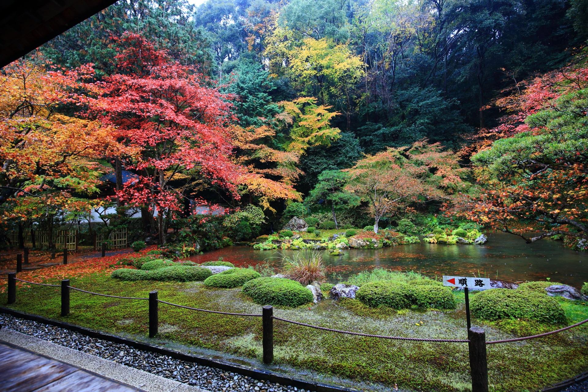 雨と秋色に染まった南禅院庭園