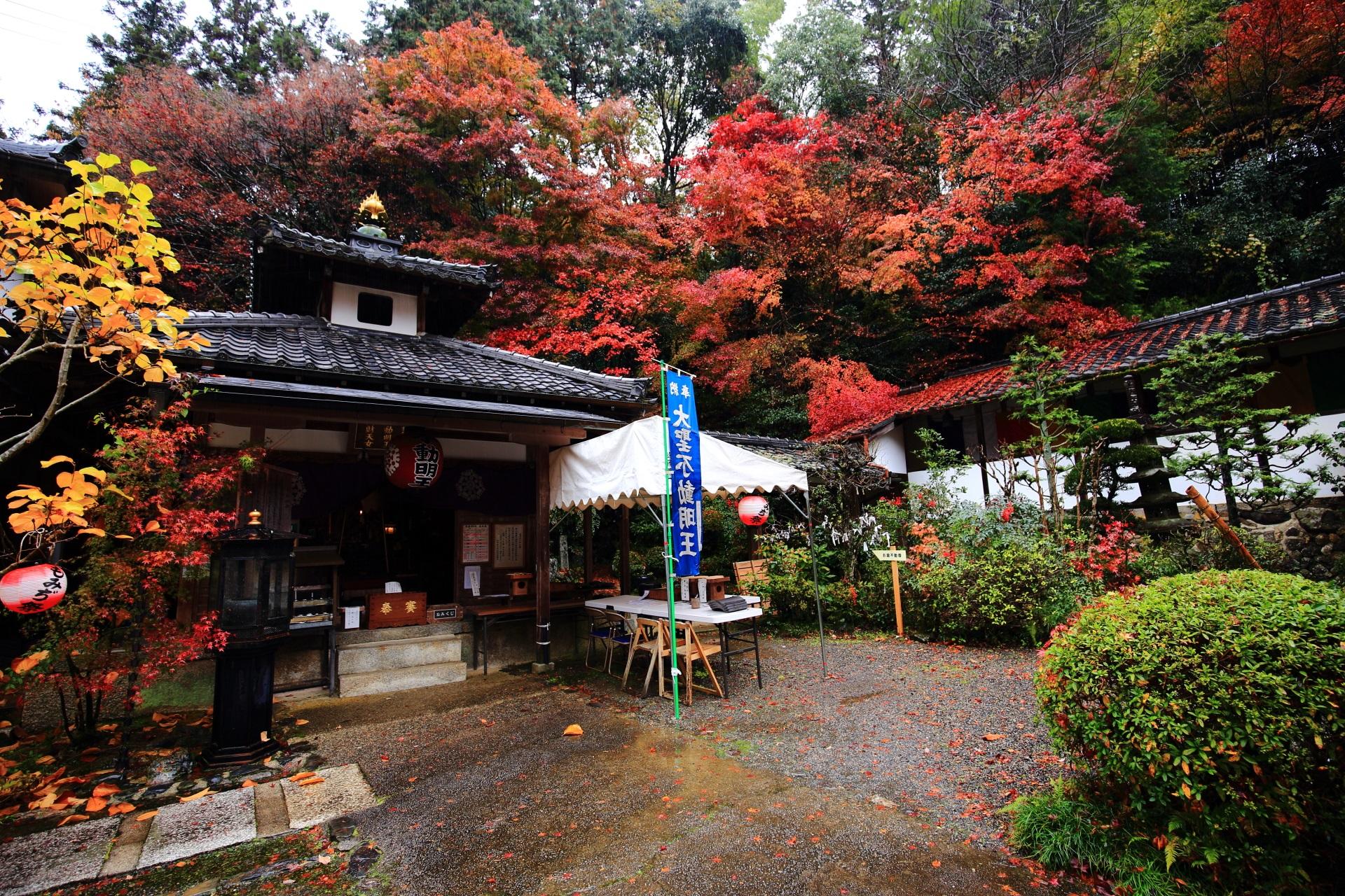 双林院(山科聖天)の素晴らしい紅葉や散りもみじと秋の情景に感謝
