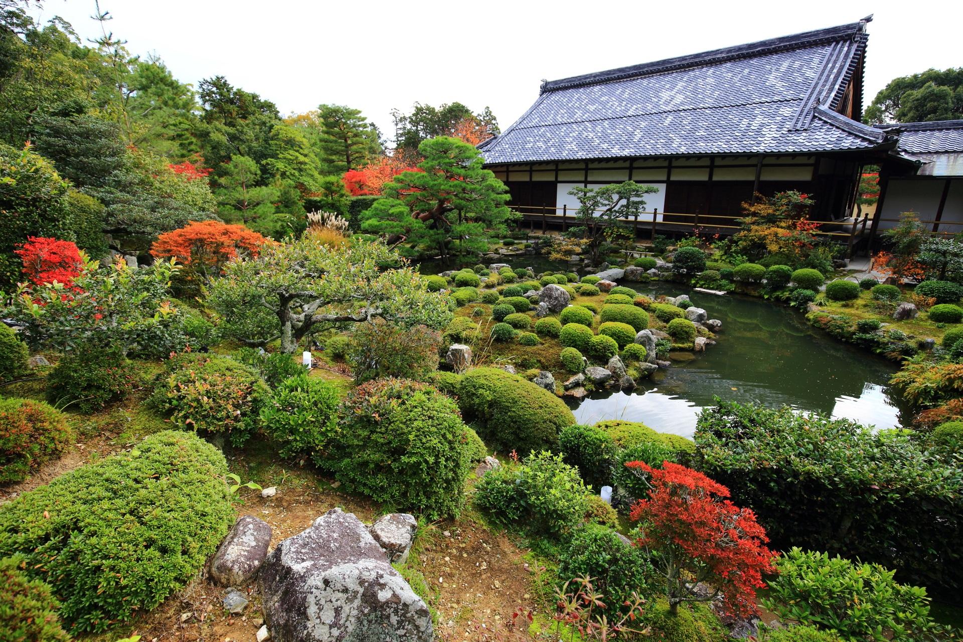 清漣亭の方から眺めた西庭の芙蓉池や方丈と際立つ紅葉