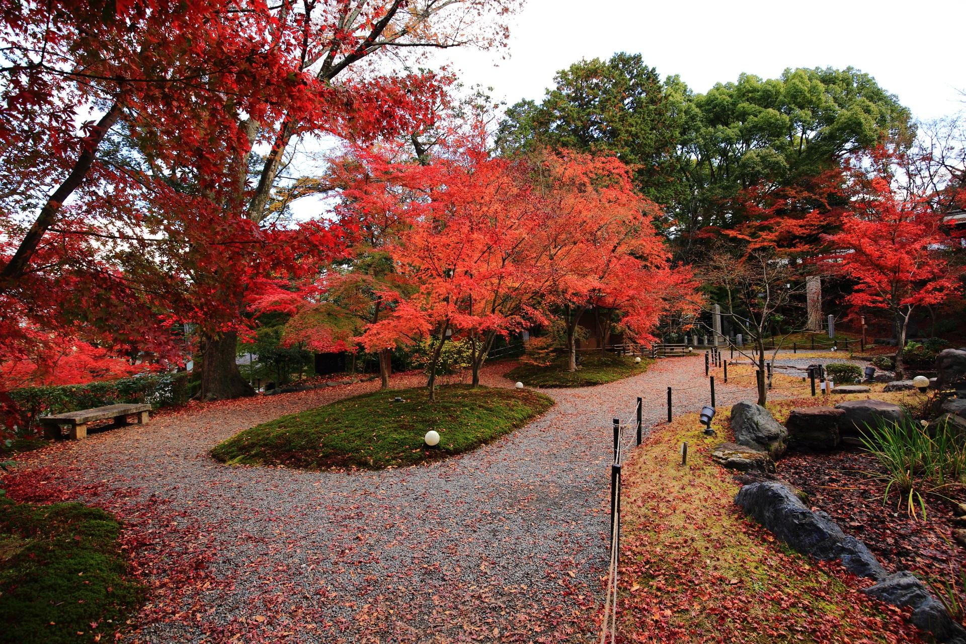 秋色に染まった紅葉の溢れる錦景苑