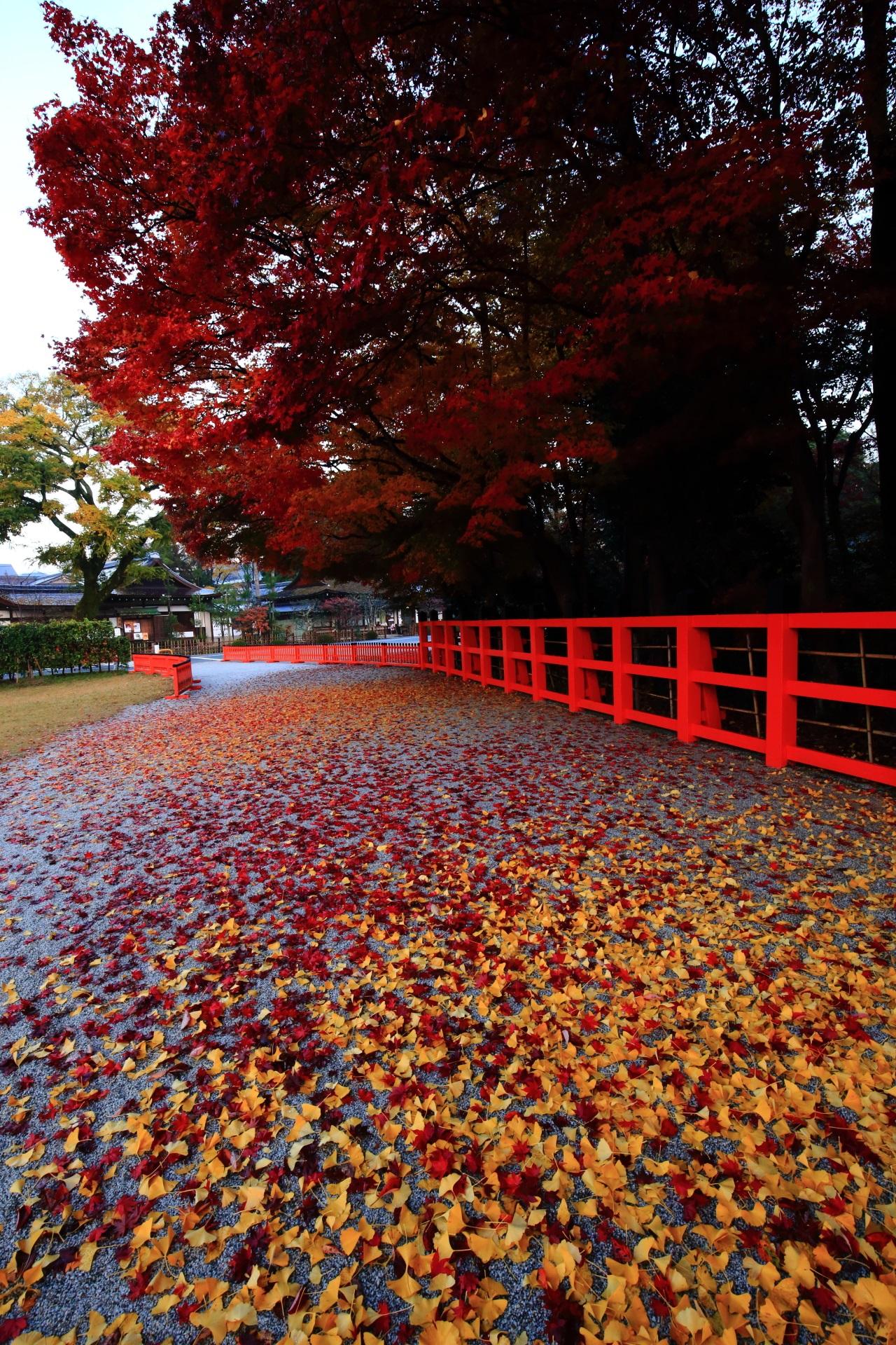 上賀茂神社の他では見られないような最高の秋の情景