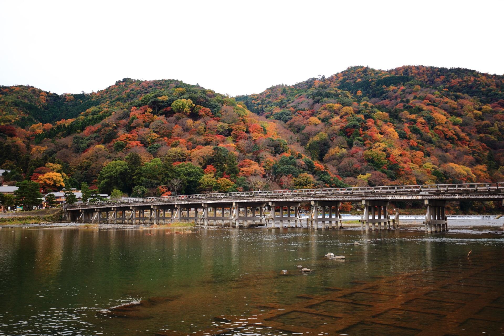 色とりどりに染まる嵐山と渡月橋