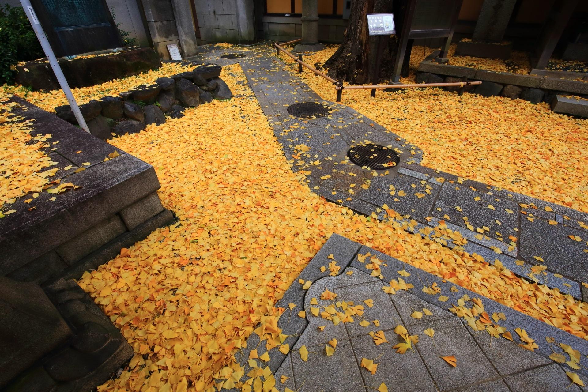 本能寺のあまり目にしない独特の秋模様と秋色