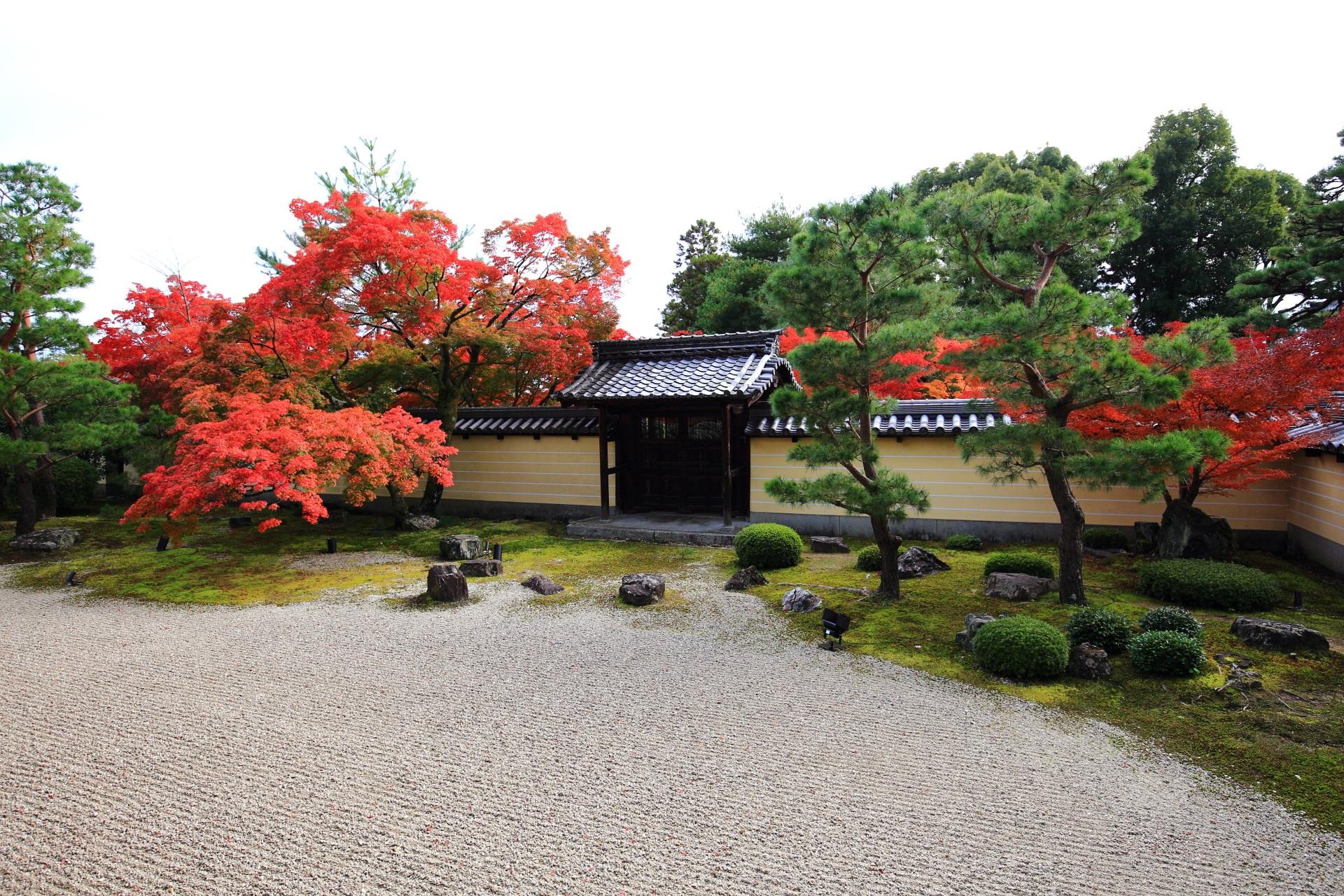 等持院の方丈前庭園(方丈南庭)の紅葉