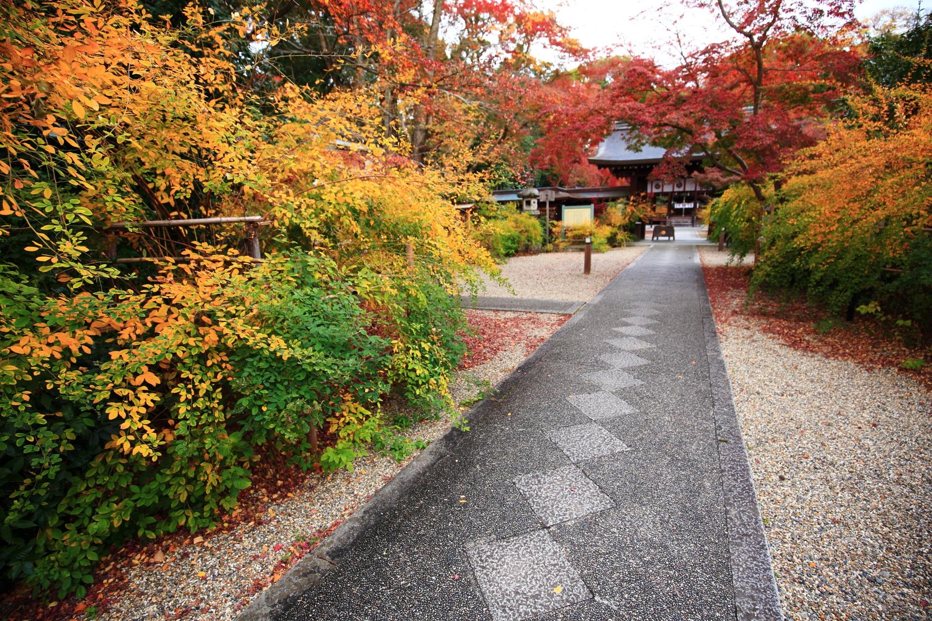 参道にマンションが建ってしまった梨木神社の紅葉