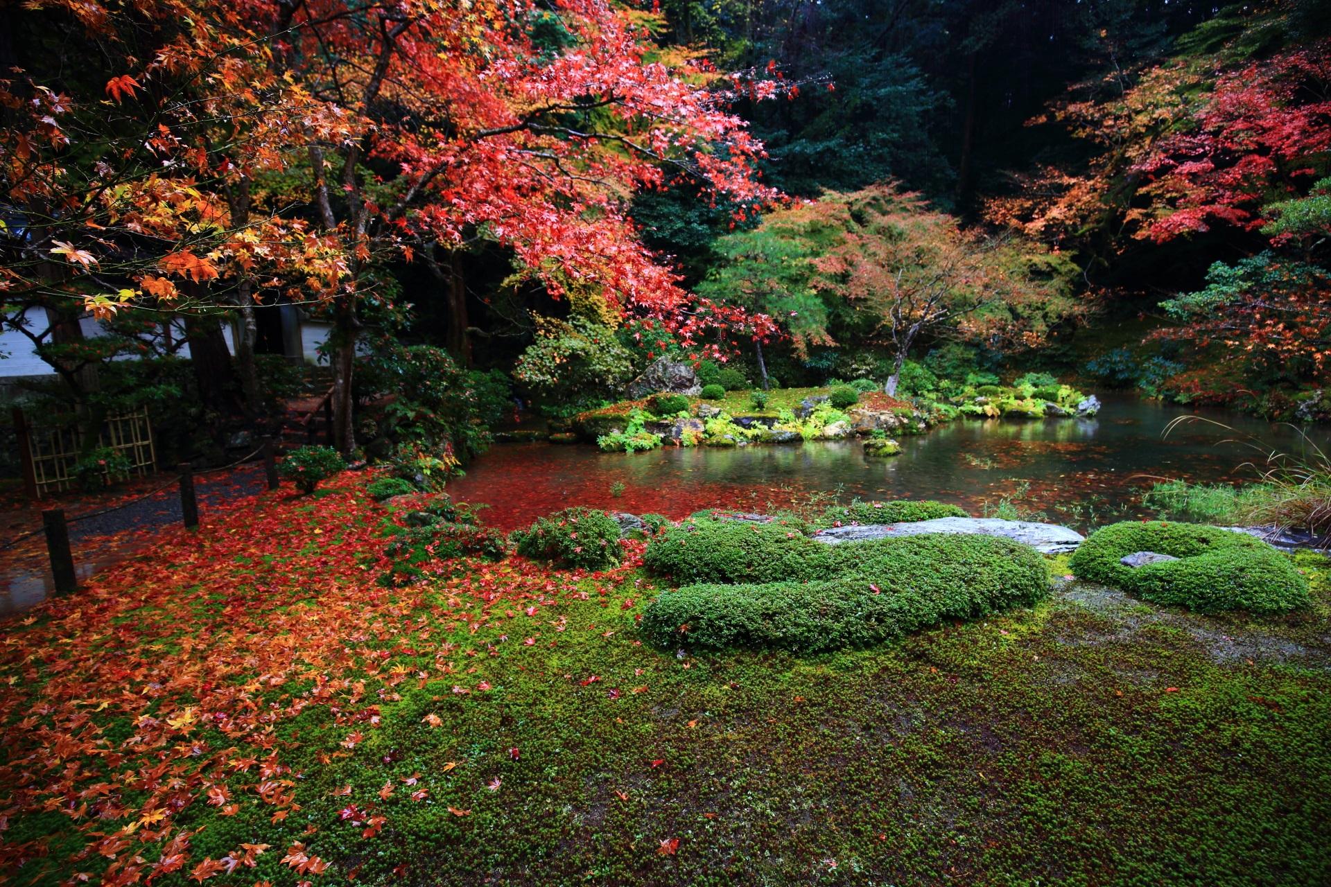 南禅院の晩秋の美しすぎる多彩な彩り