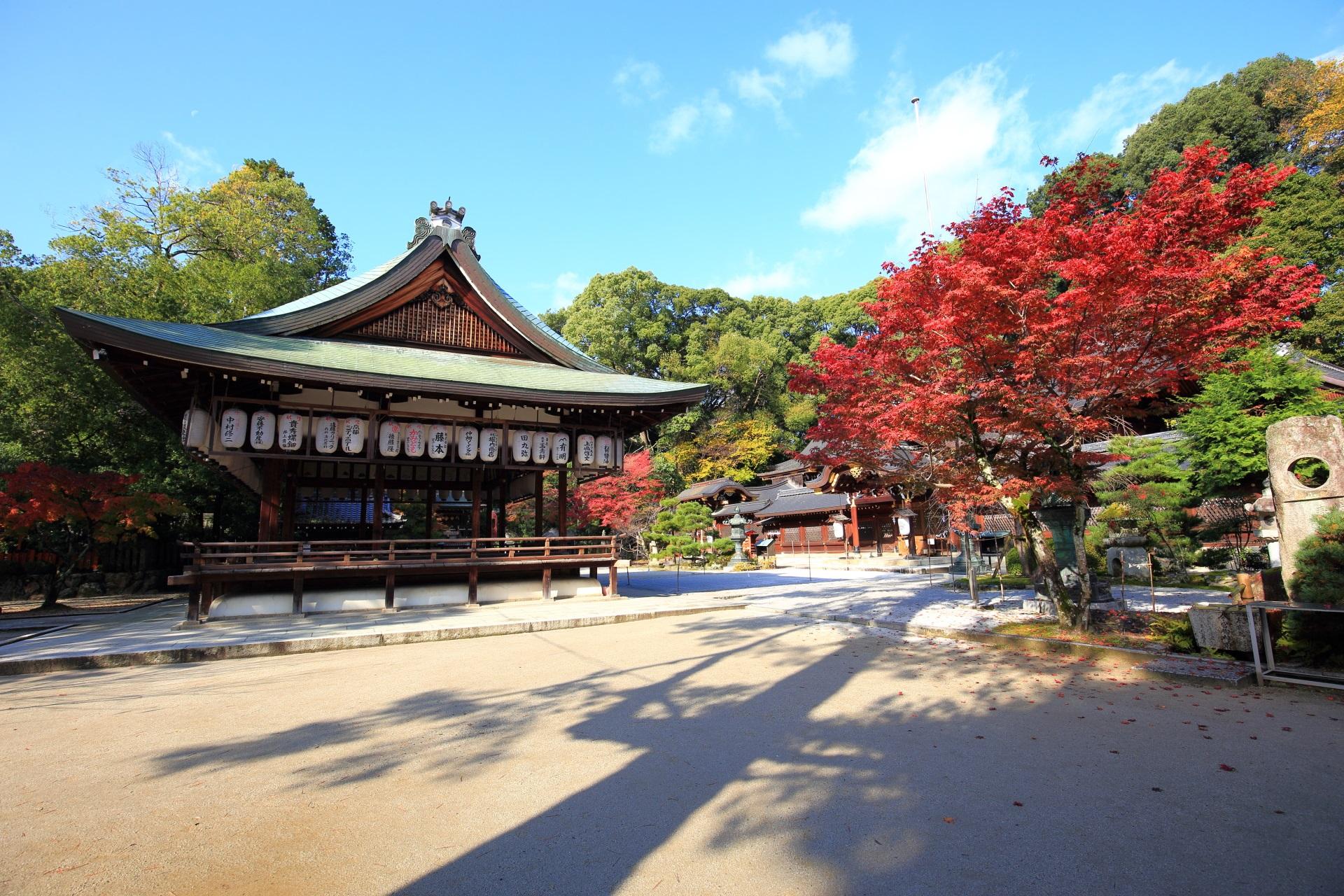 今宮神社の拝殿と本殿と境内を華やぐ燃えるような紅葉