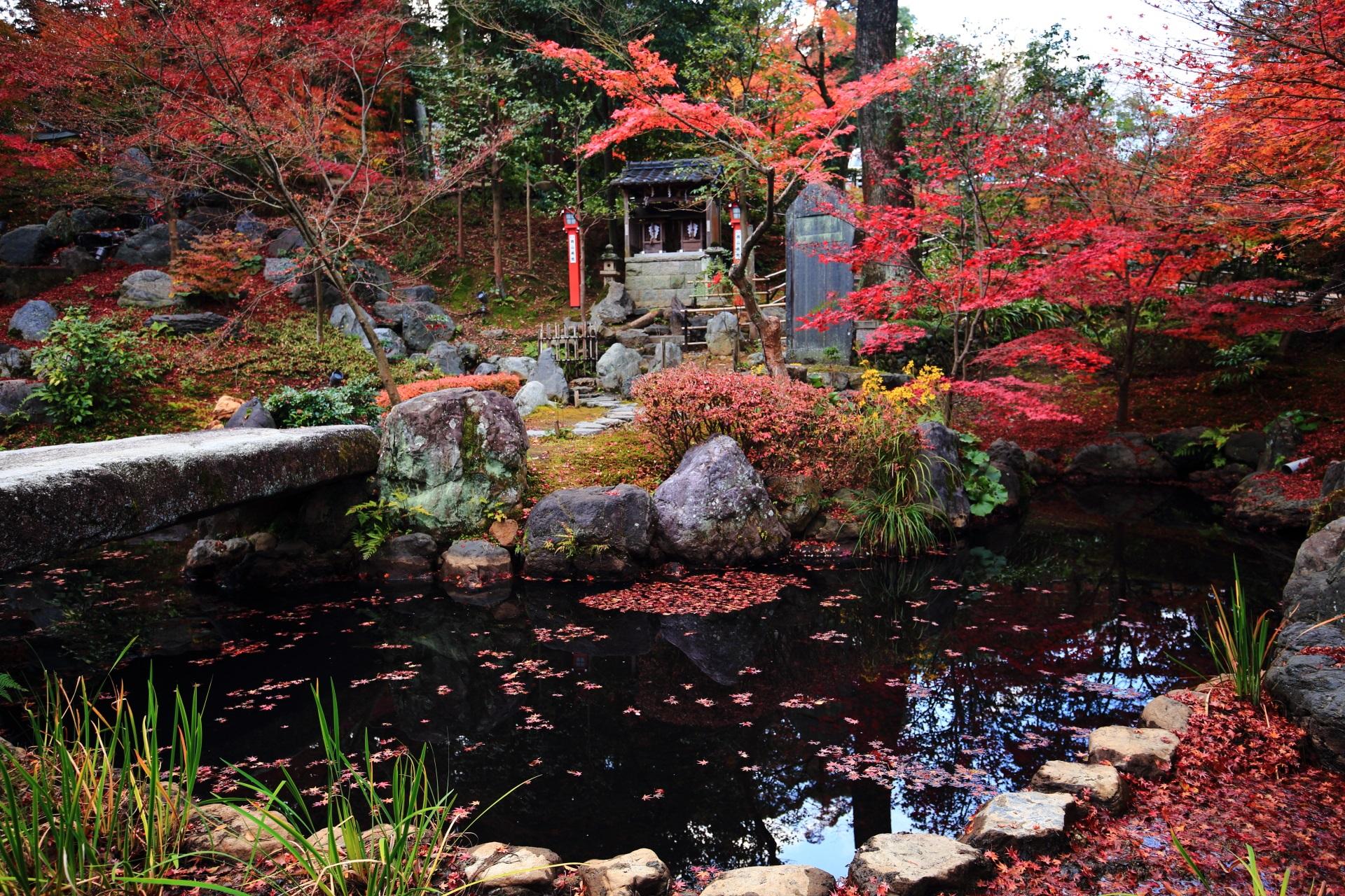水辺を彩る鮮やかな紅葉と水面を染める風情ある散りもみじ