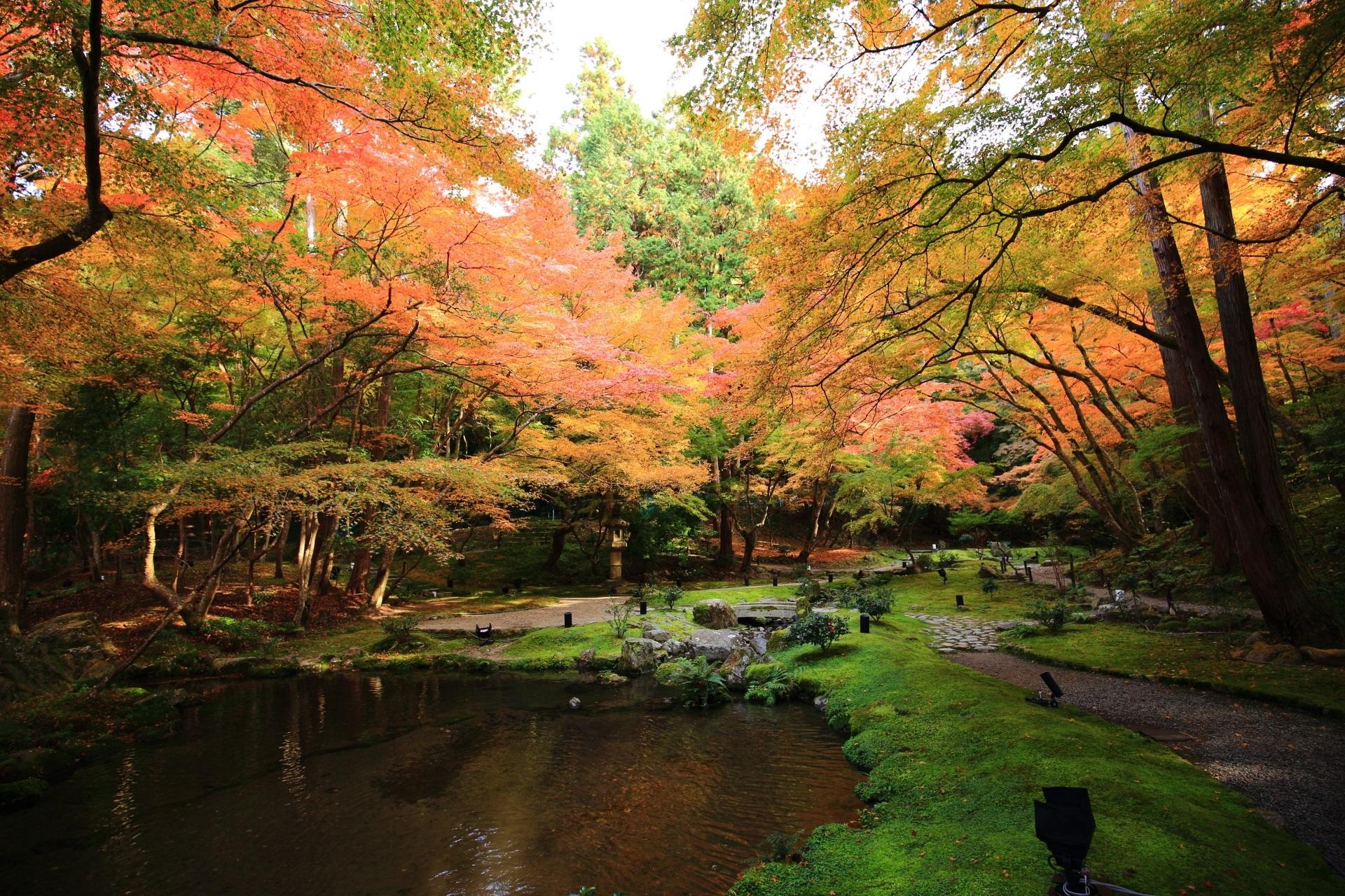 醍醐寺の弁天堂裏の庭園の優しい感じの色合いの紅葉