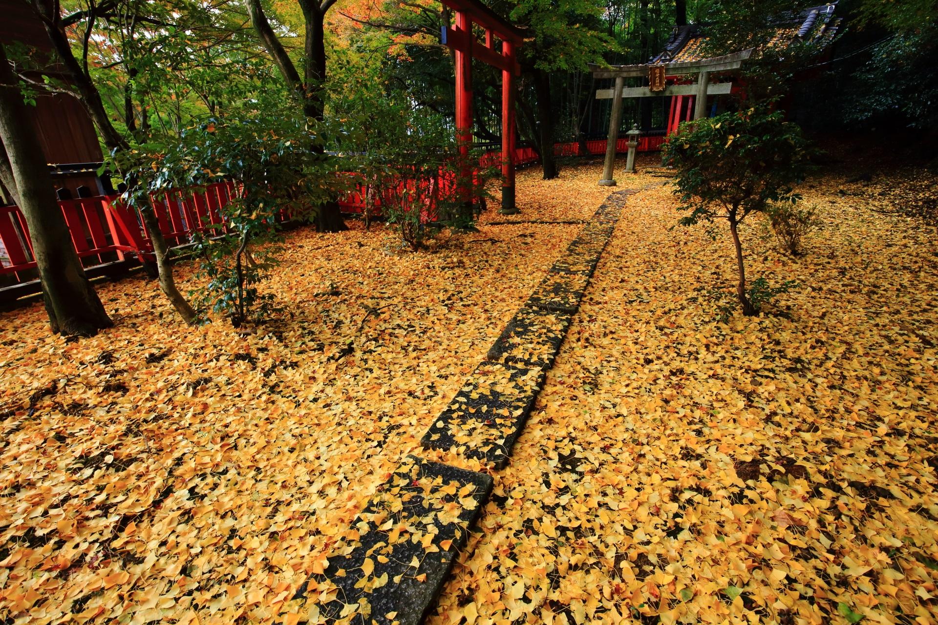 華やかな秋色の光景