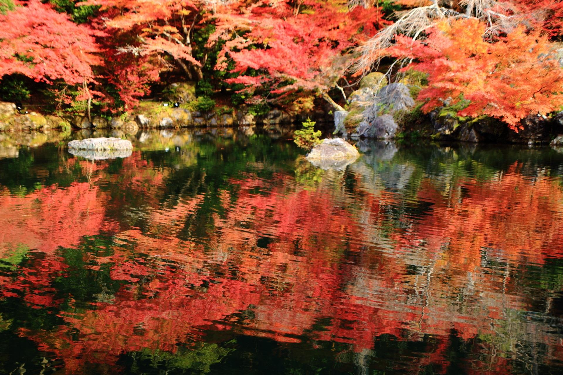 水面で揺らめく醍醐寺の多彩な秋色