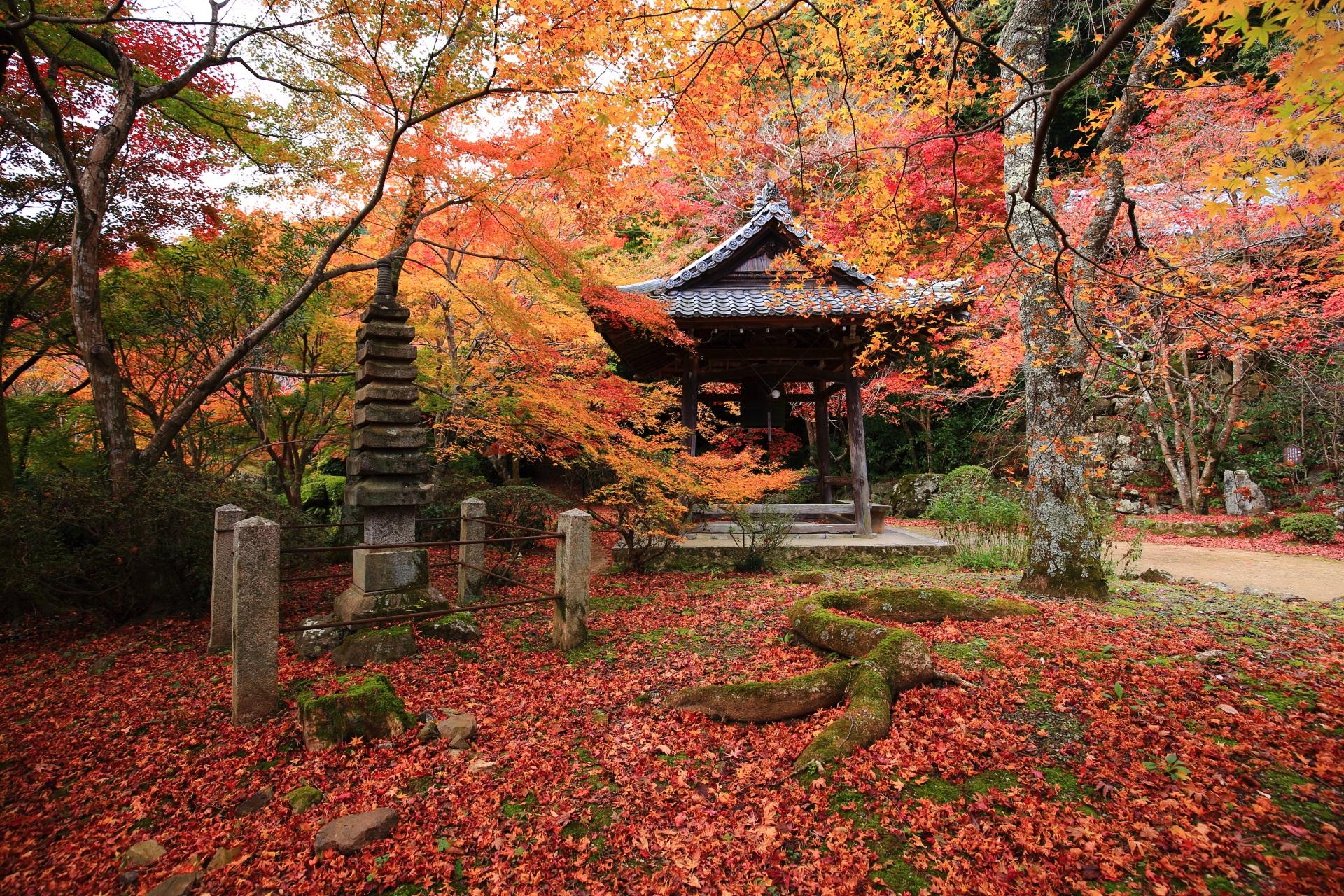 勝持寺の鐘楼の紅葉と散りもみじ