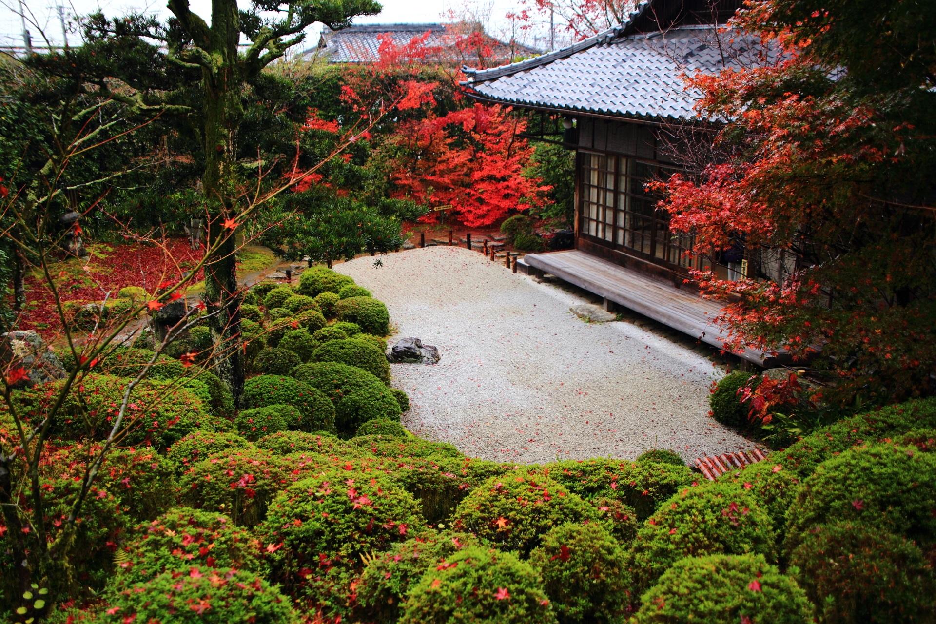 芭蕉庵の方から眺めた深い秋色に染まった枯山水庭園
