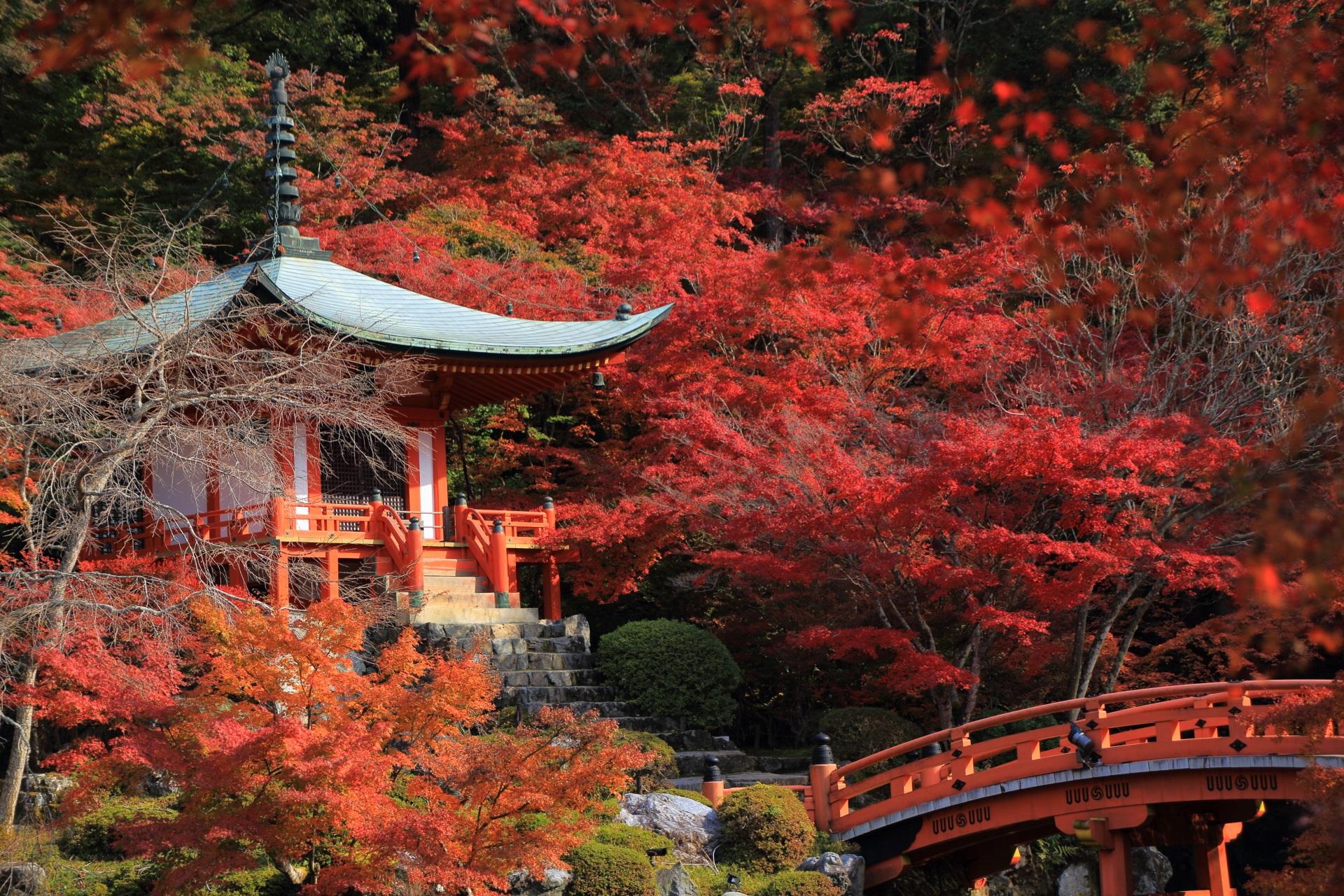 水辺に佇む弁天堂と朱色の橋を彩る艶やかな紅葉