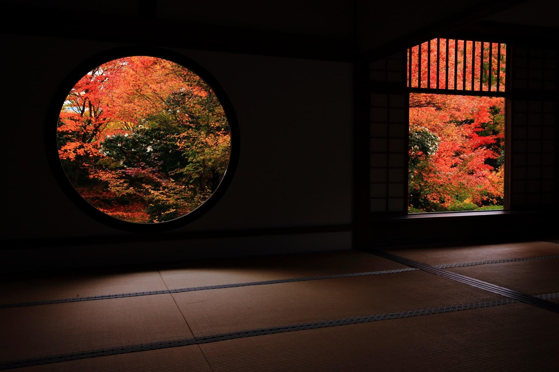 源光庵の素晴らしい紅葉と秋の情景