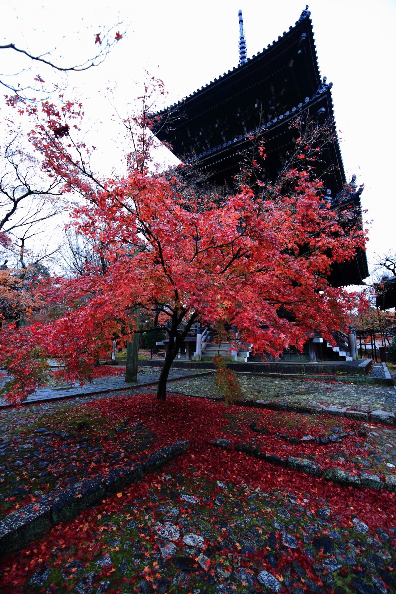 真如堂の三重塔と鮮やかな散り紅葉