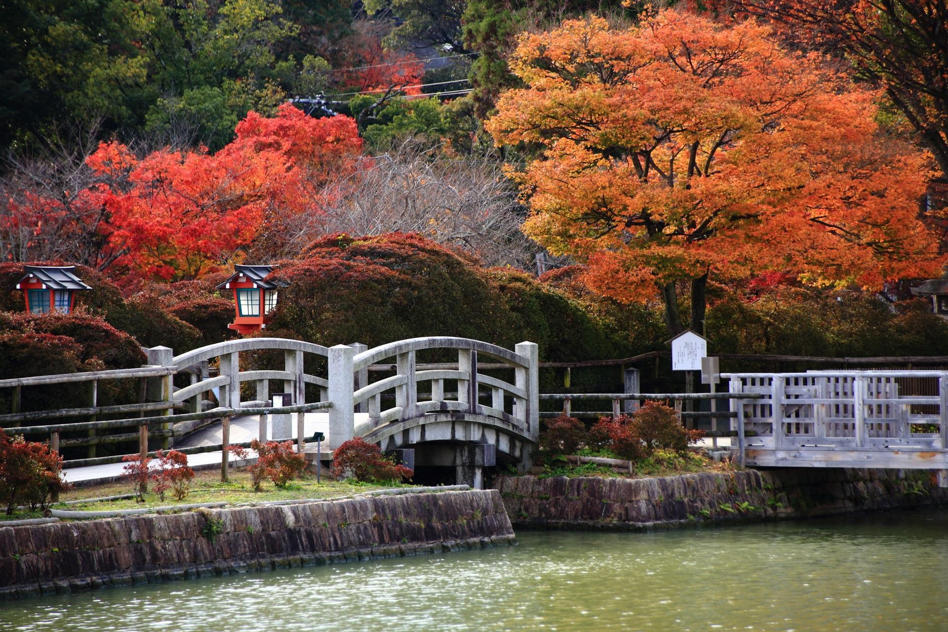 八条ヶ池の風情も感じられる多彩な紅葉