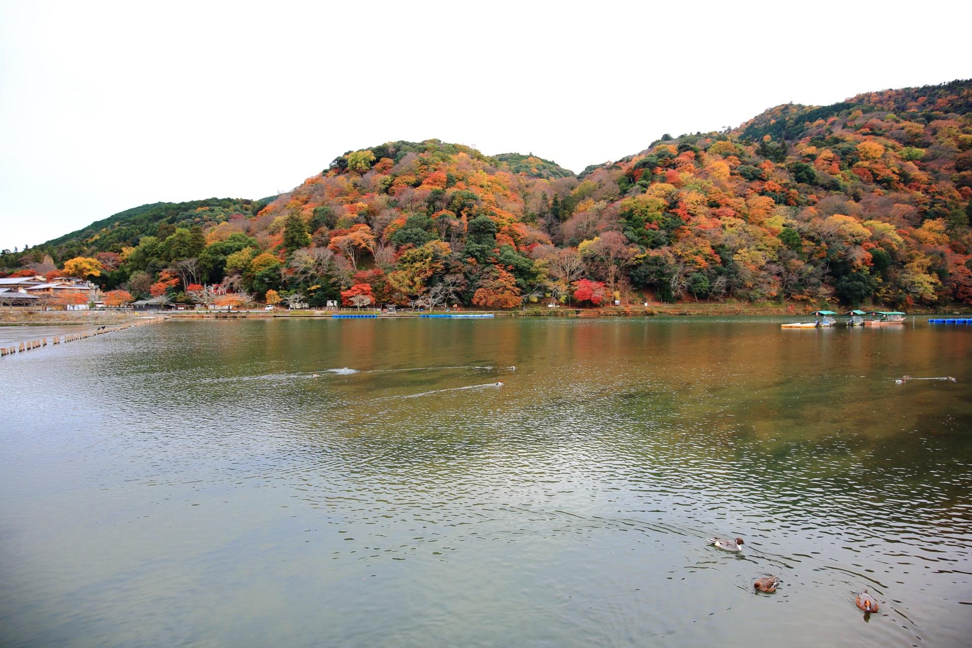 嵐山 高画質 紅葉 画像