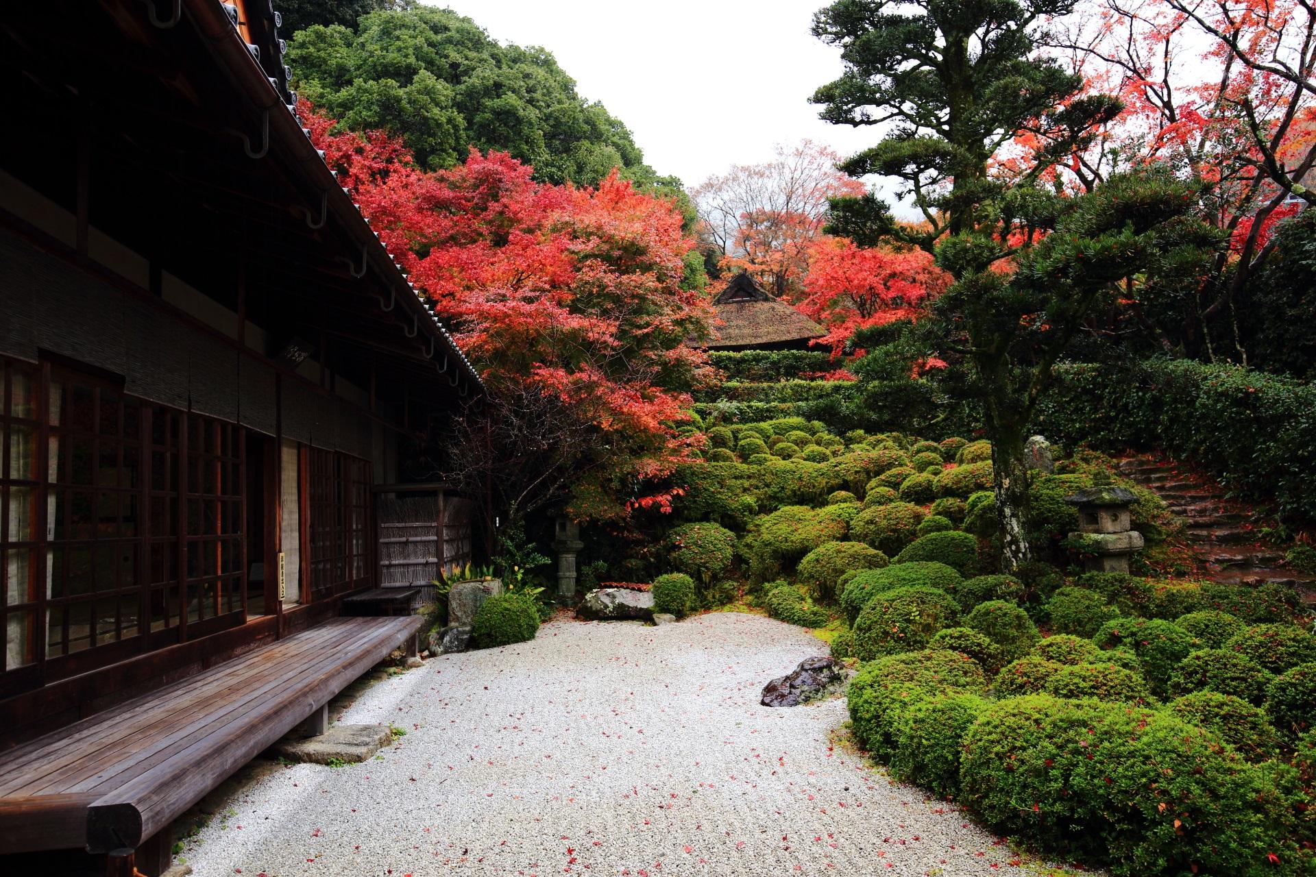 金福寺の方丈前の枯山水庭園と紅葉