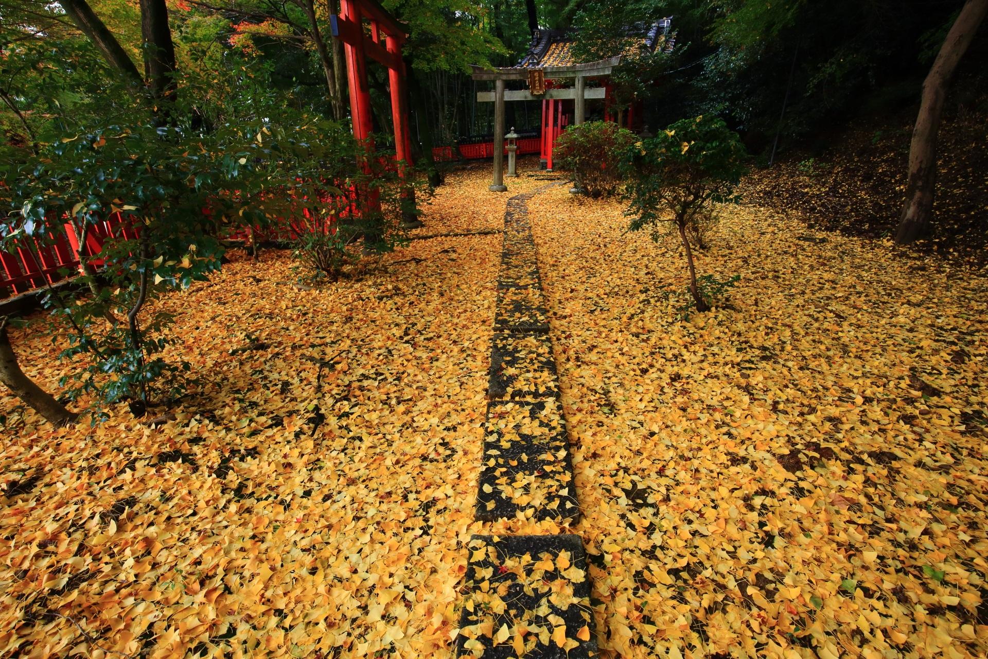 山崎聖天の稲荷社に広がる黄色い銀杏の絨毯