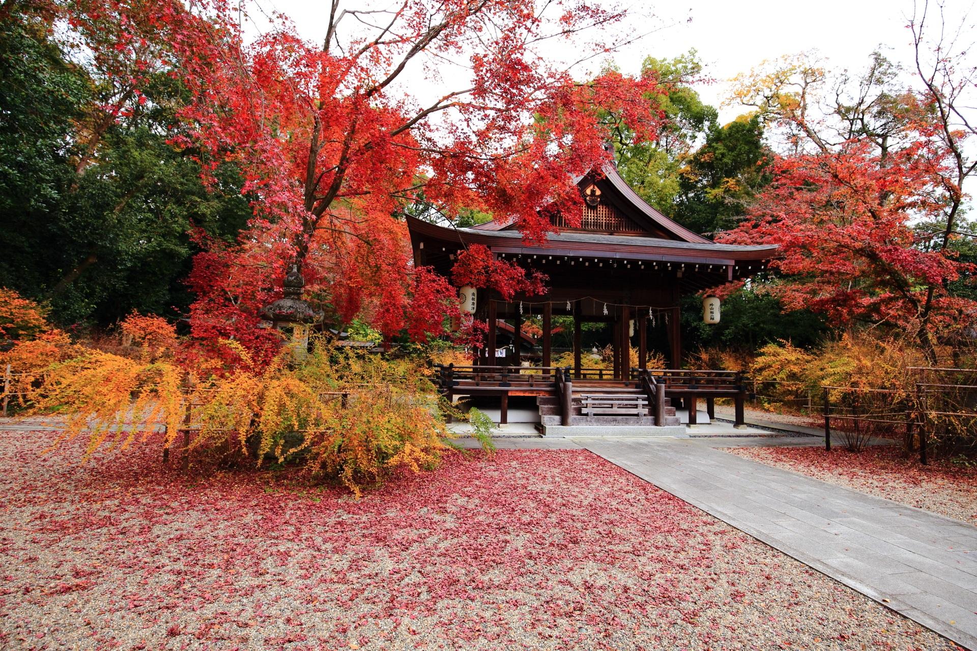 京都の紅葉の穴場の梨木神社