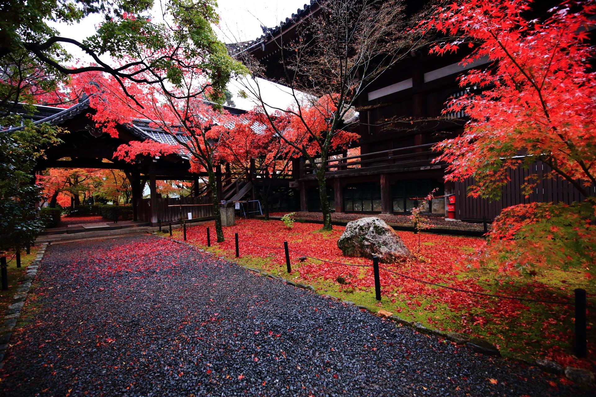 真如堂の渡廊下付近の緑の苔を鮮やかに彩る散りもみじ