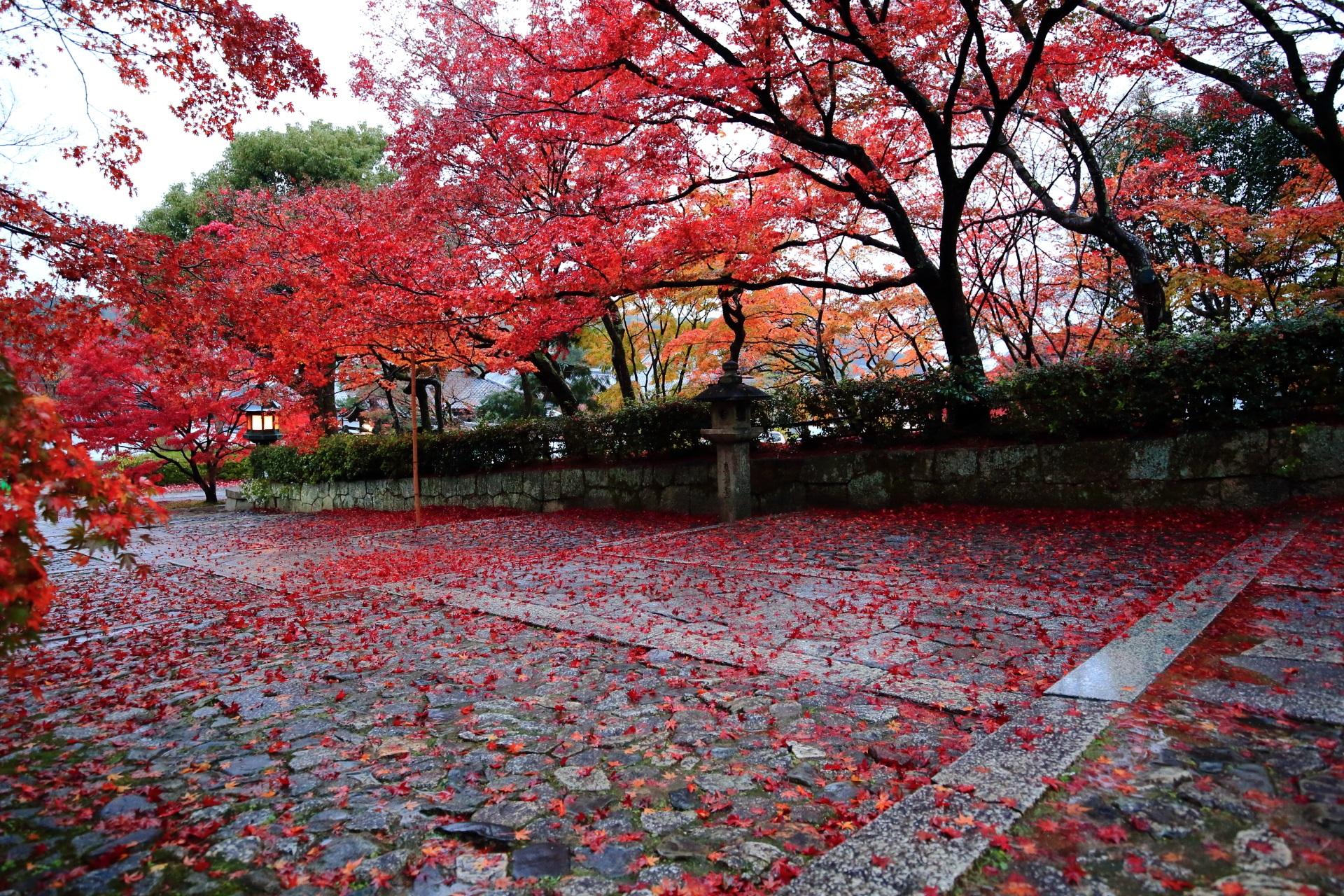 風情ある石の参道の美しすぎる散り紅葉