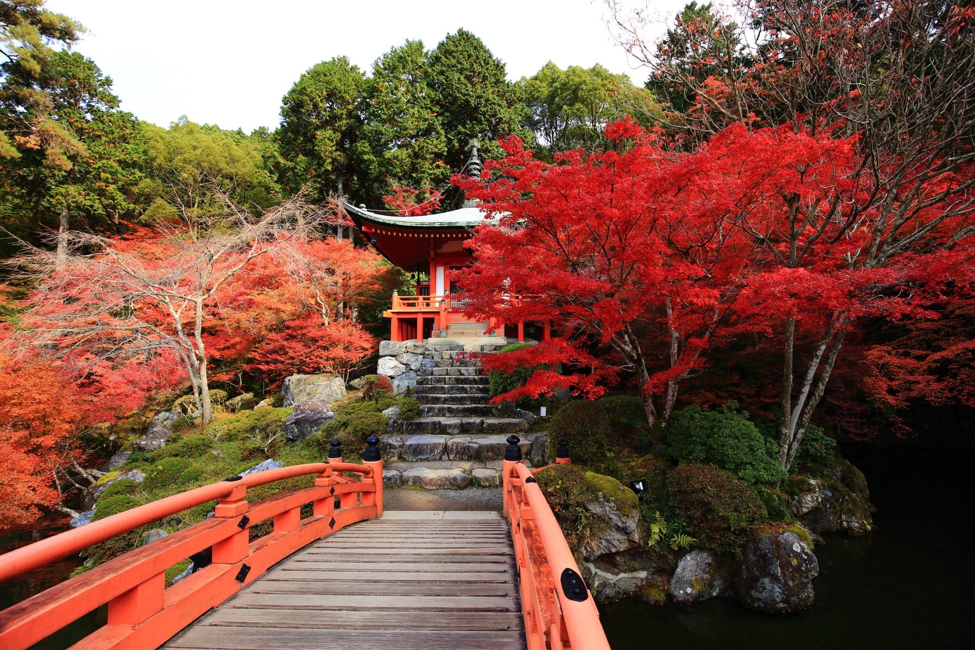 醍醐寺の弁天堂と燃えるような真っ赤な紅葉